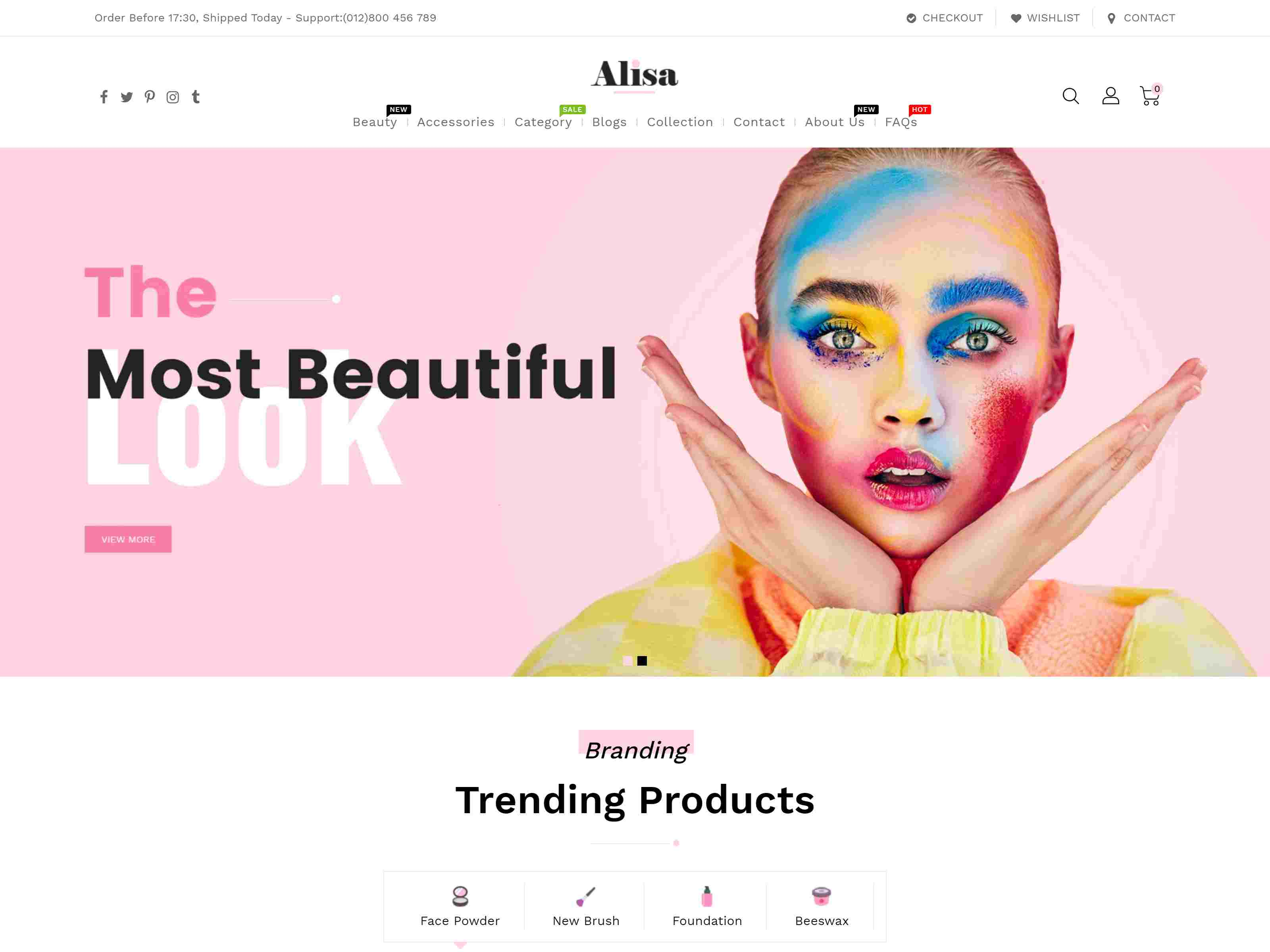 Alisa - Sectioned Multipurpose Shopify Theme