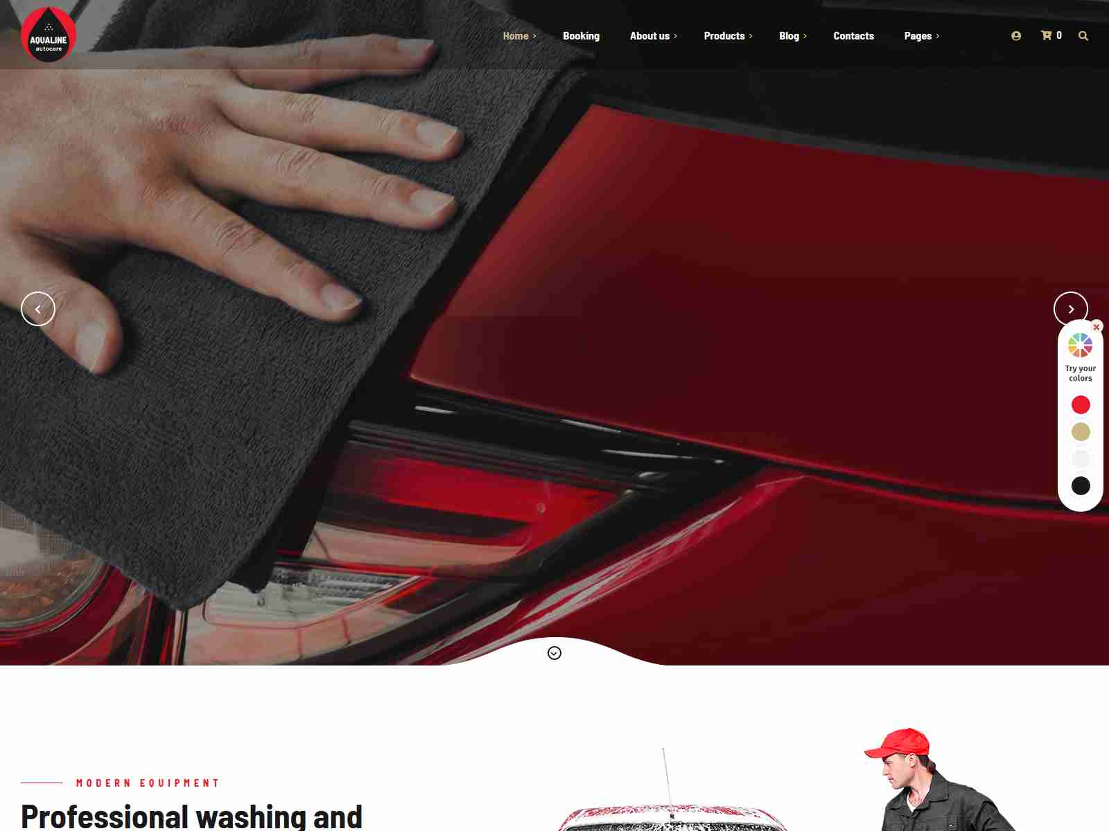 Best Premium Car Washing WordPress Themes