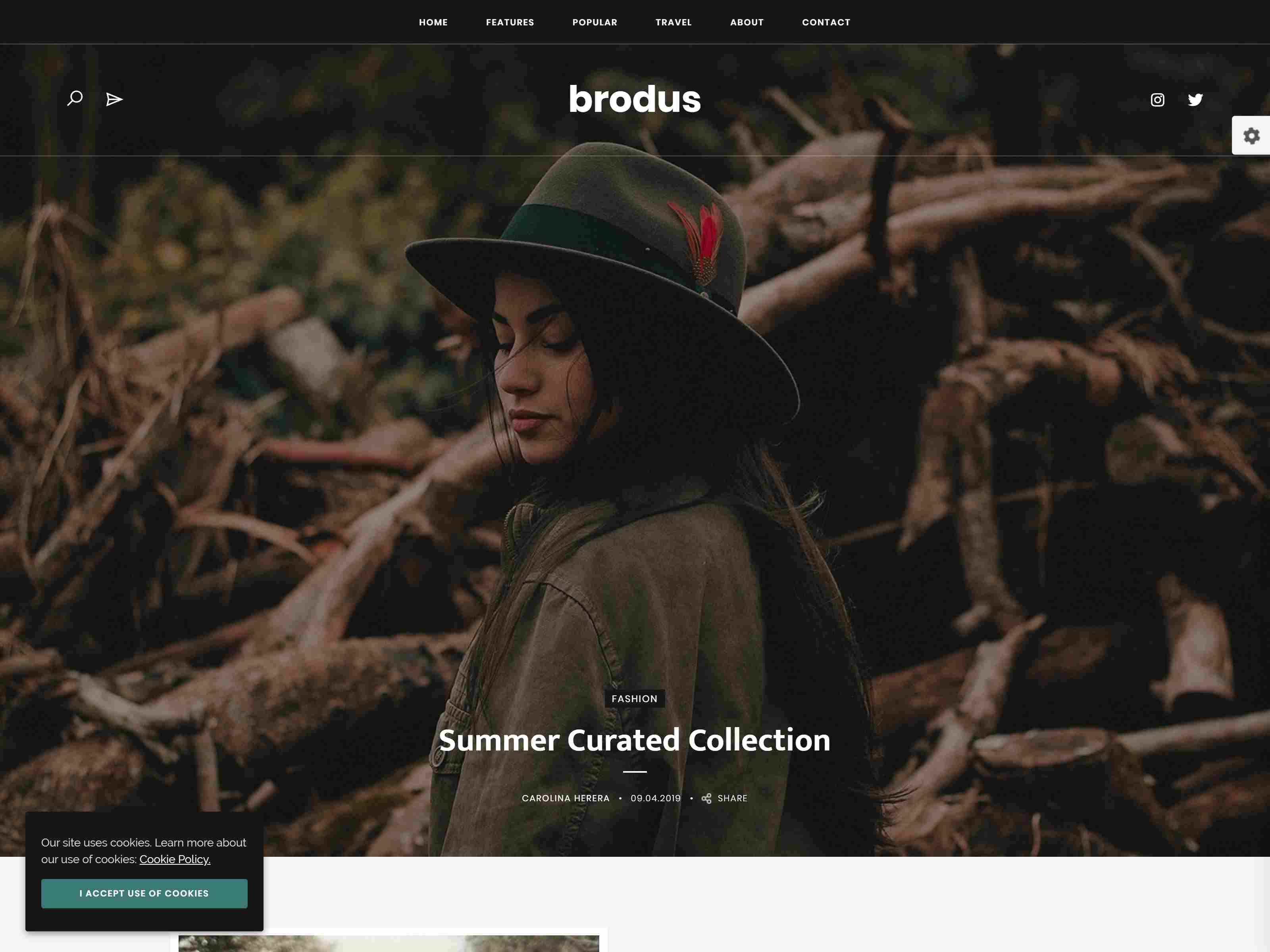 Brodus - Personal Blog WordPress Theme