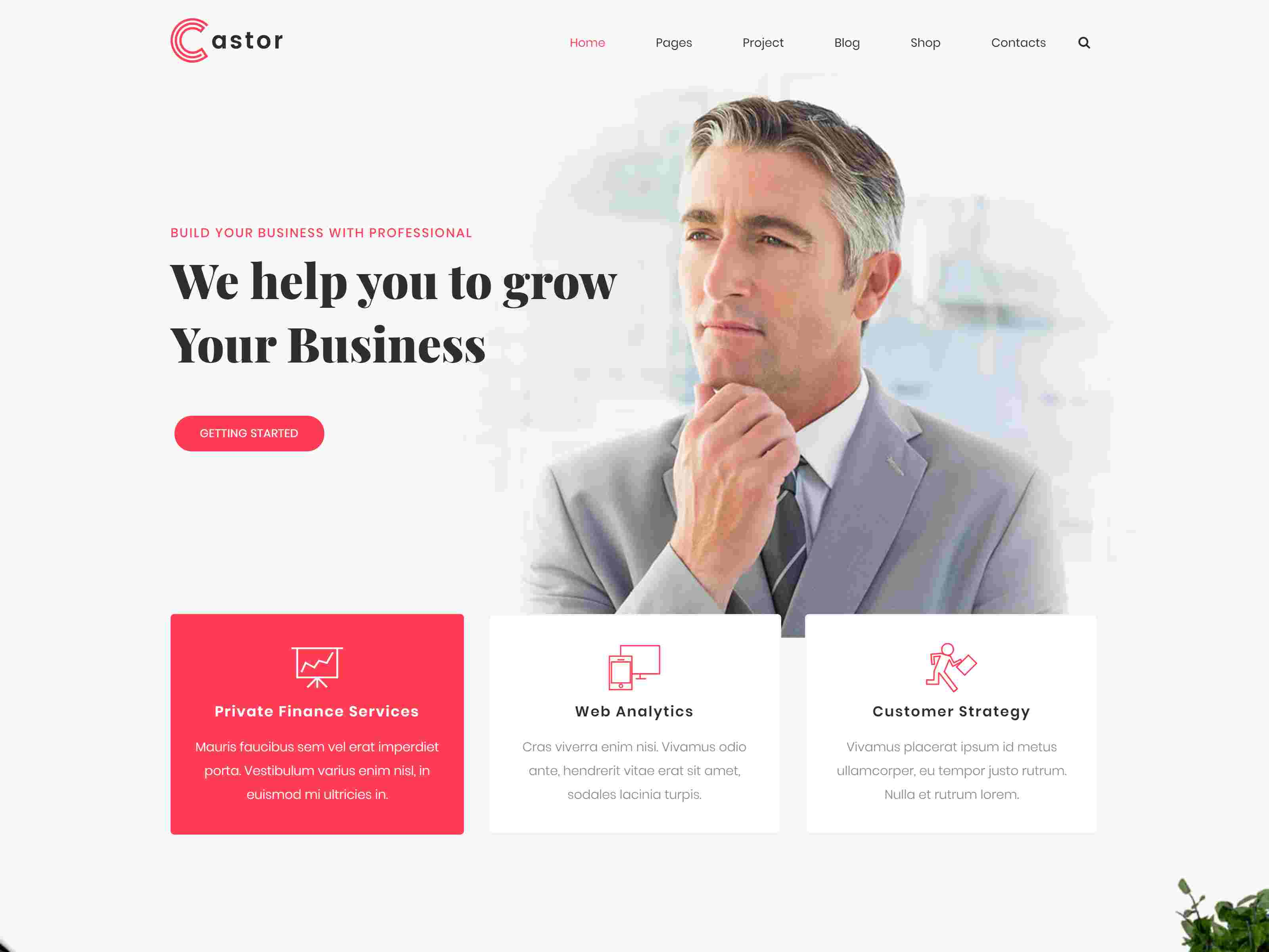 Castor - Business Consulting WordPress Theme