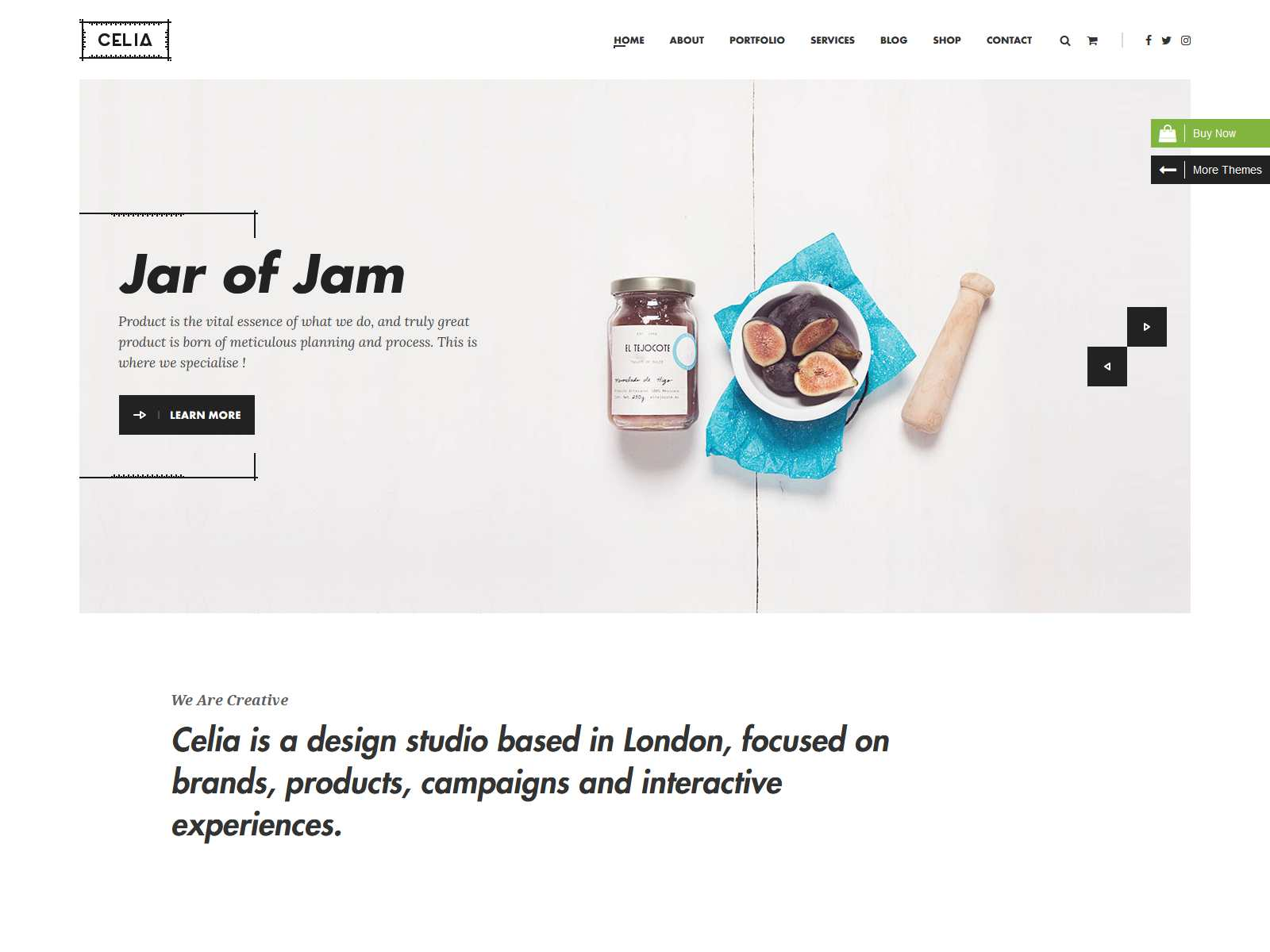Celia - Innovative and Inspiring Portfolio WordPress Theme for Modern Agencies and Freelancers