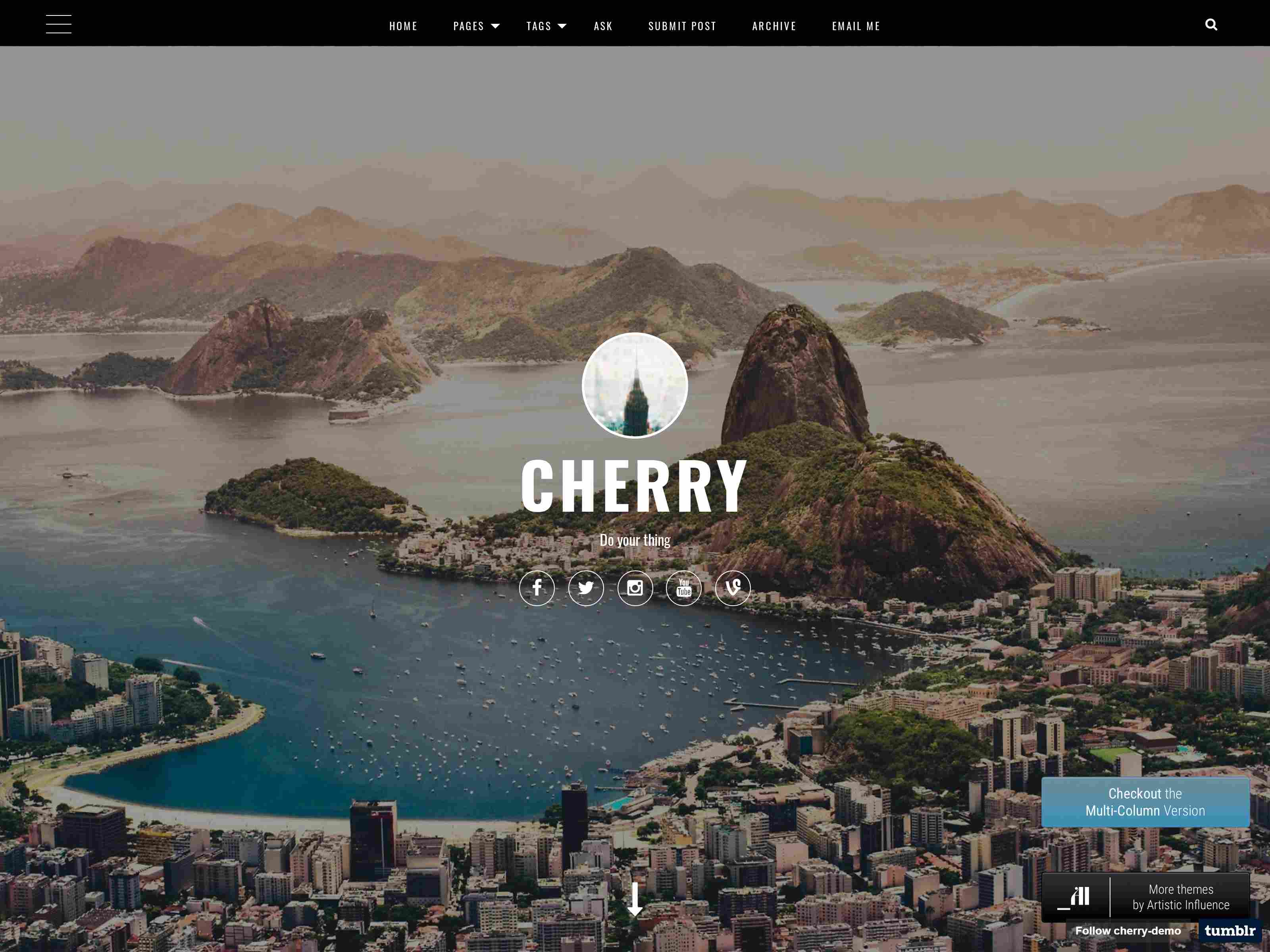 Best Premium Personal Blog Tumblr Themes
