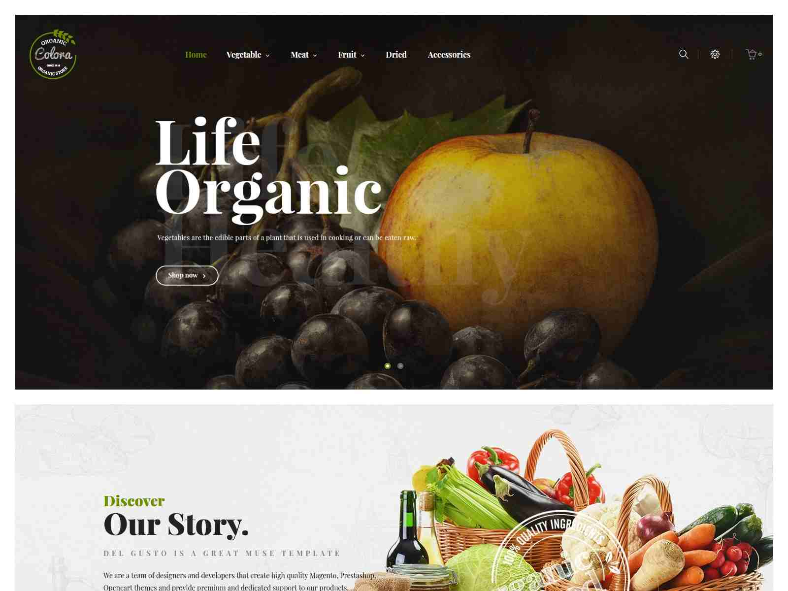 Best Premium Winery Magento Themes