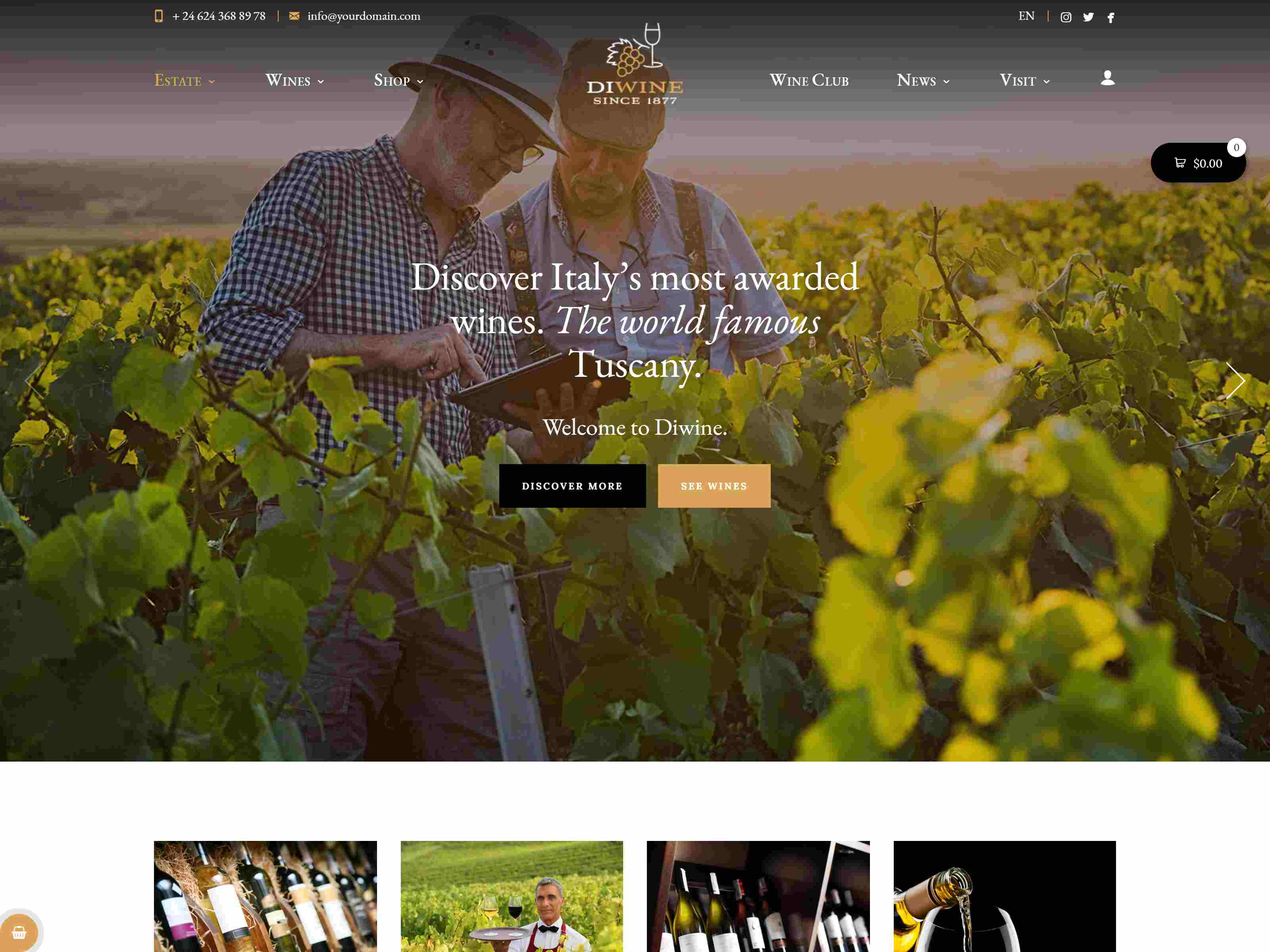 Diwine - Winery & Wine Shop, Vineyard WordPress Theme