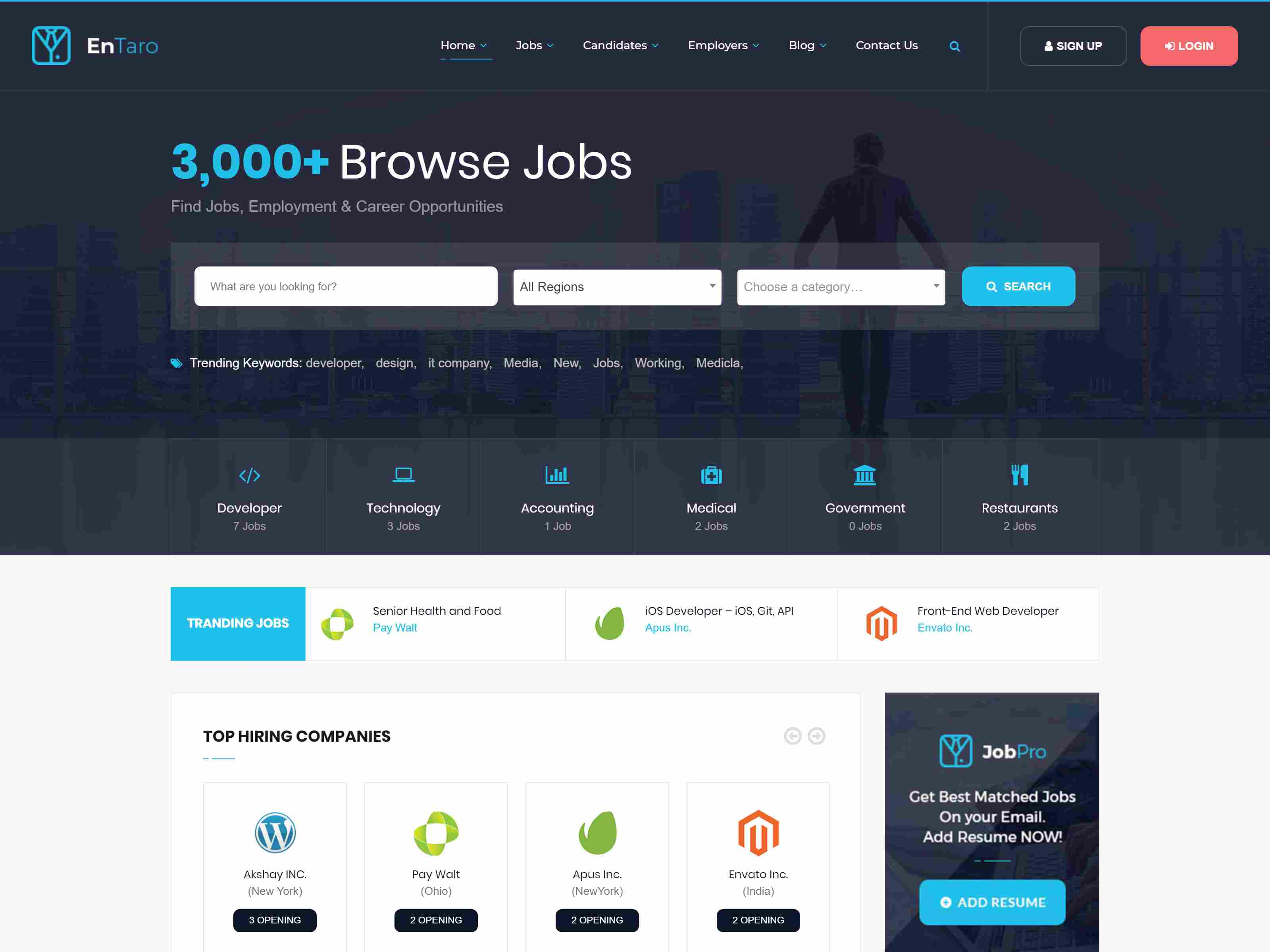 Best Premium WordPress Job Board Themes