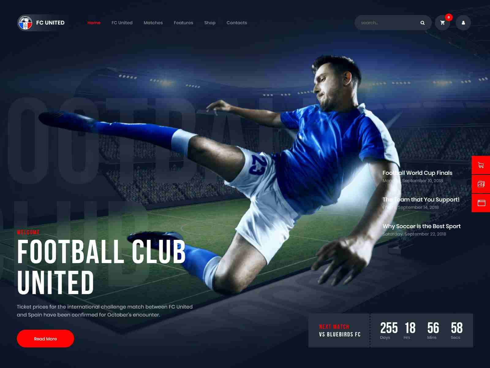 Best Premium NFL WordPress Themes