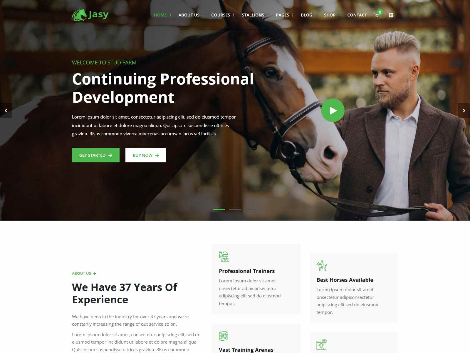 Best Premium Horses Stables WordPress Themes