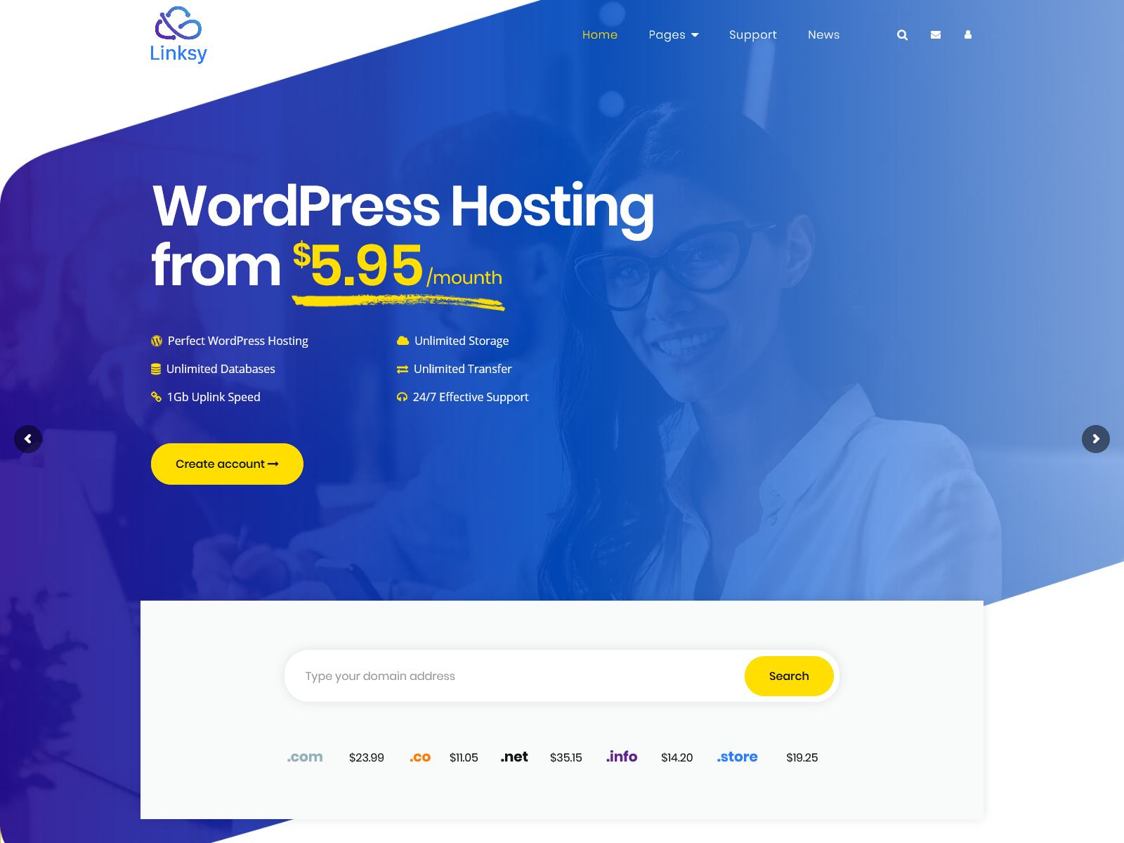 Best Premium Website Hosting WordPress Themes