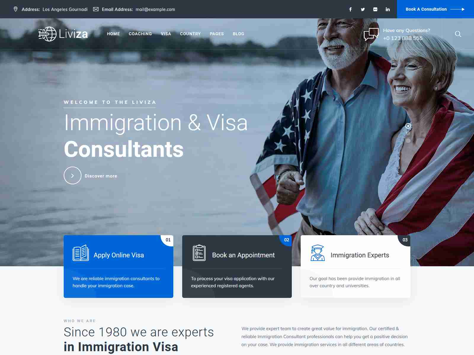 Liviza - Immigration Consulting WordPress Theme Consulting Firms WordPress Themes