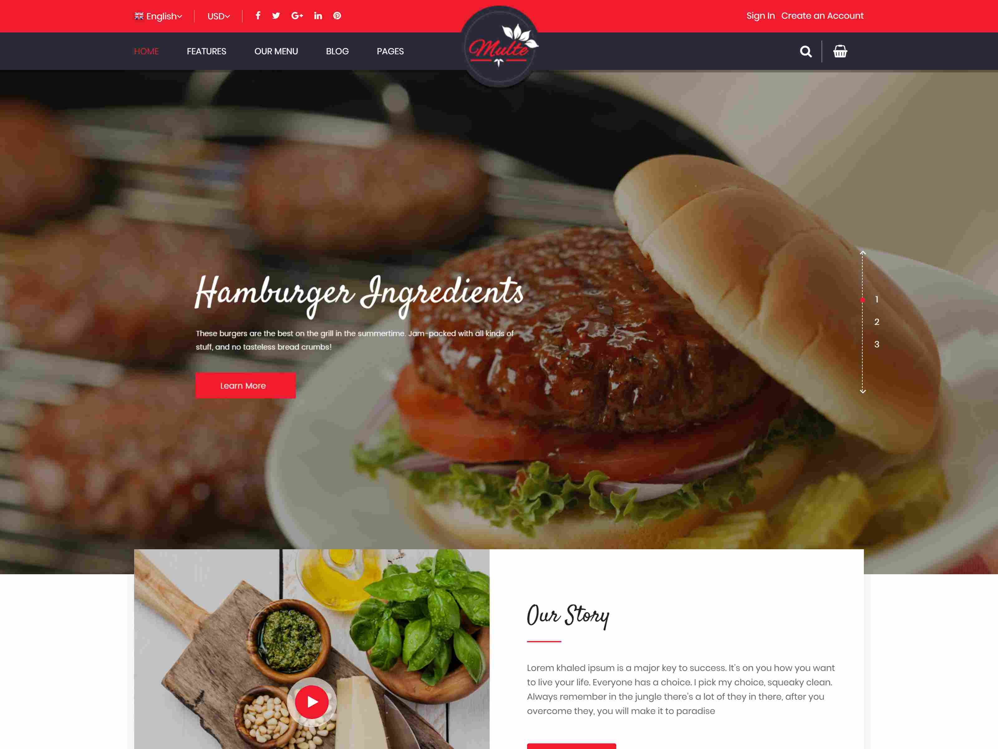 Best Premium Food Magento Themes