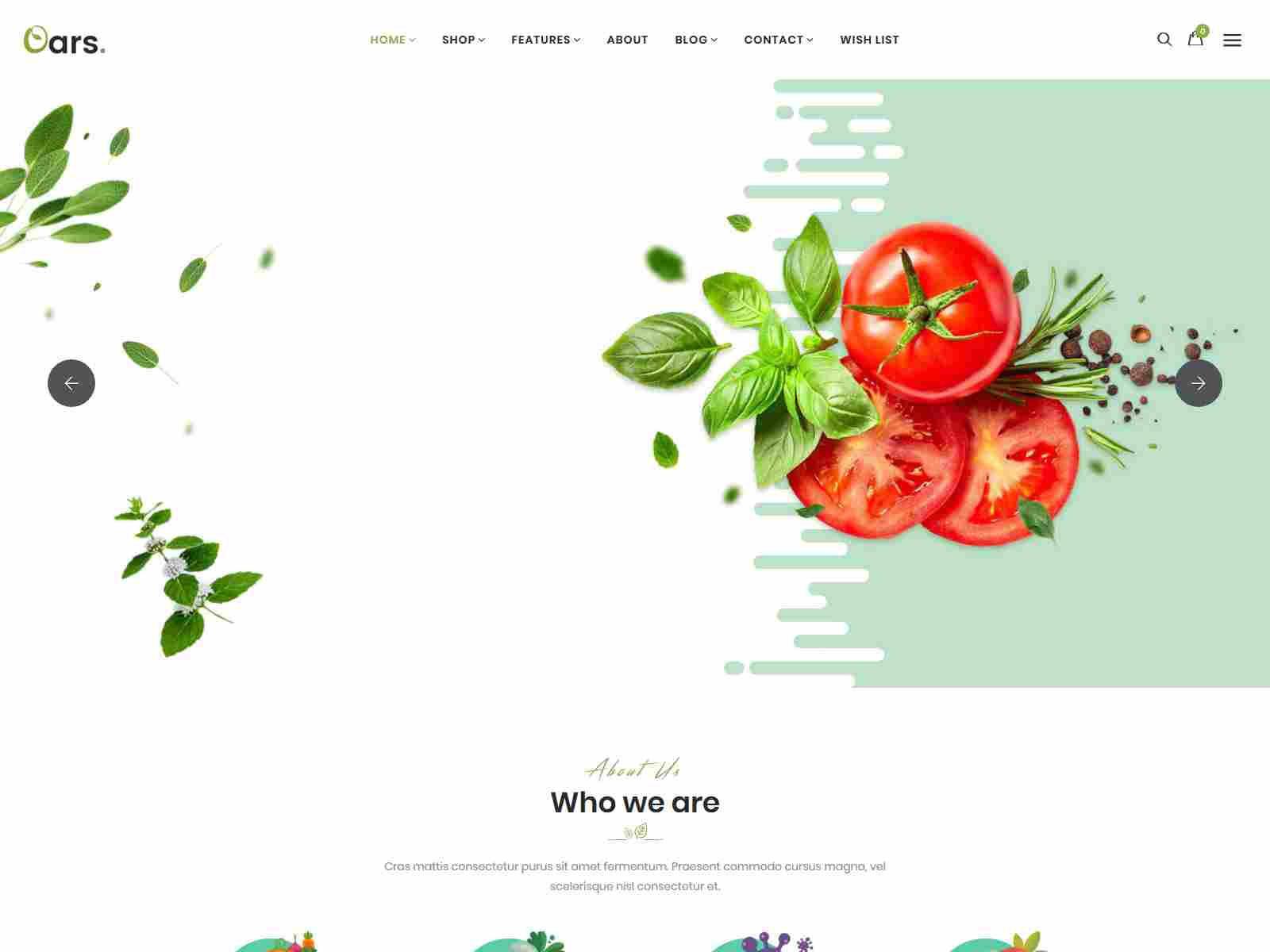 Best Premium Meat Shopify Themes