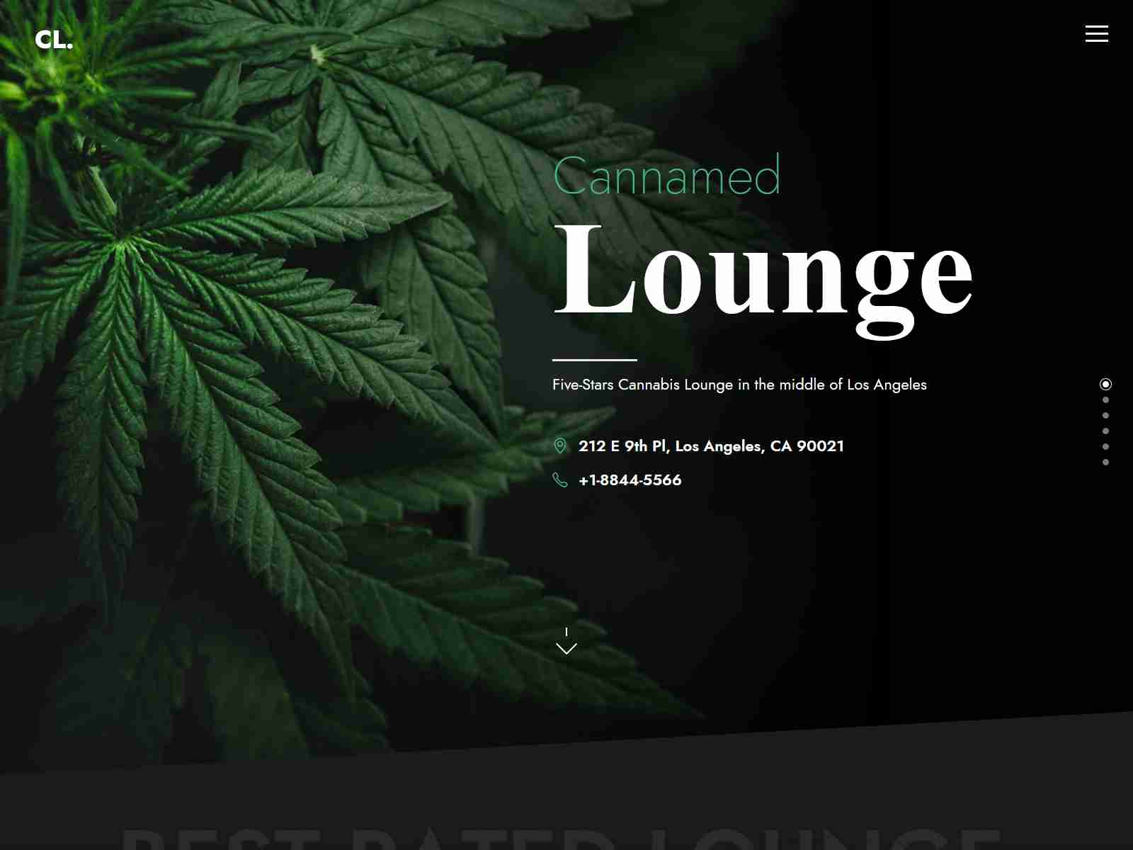 Best Medical Marijuana Themes and Cannabis Themes for WordPress