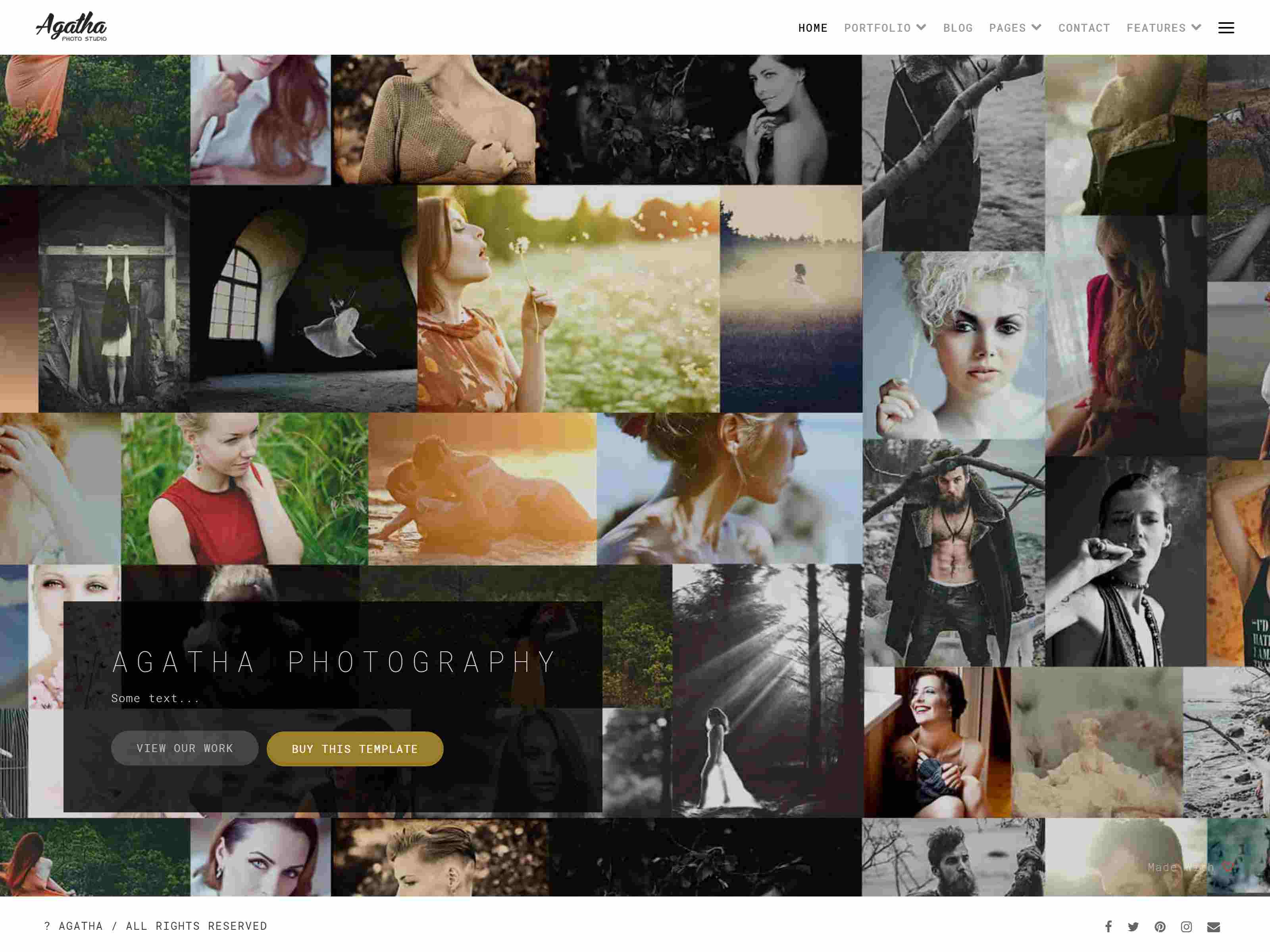 Best Premium PhotoMain Drupal Themes