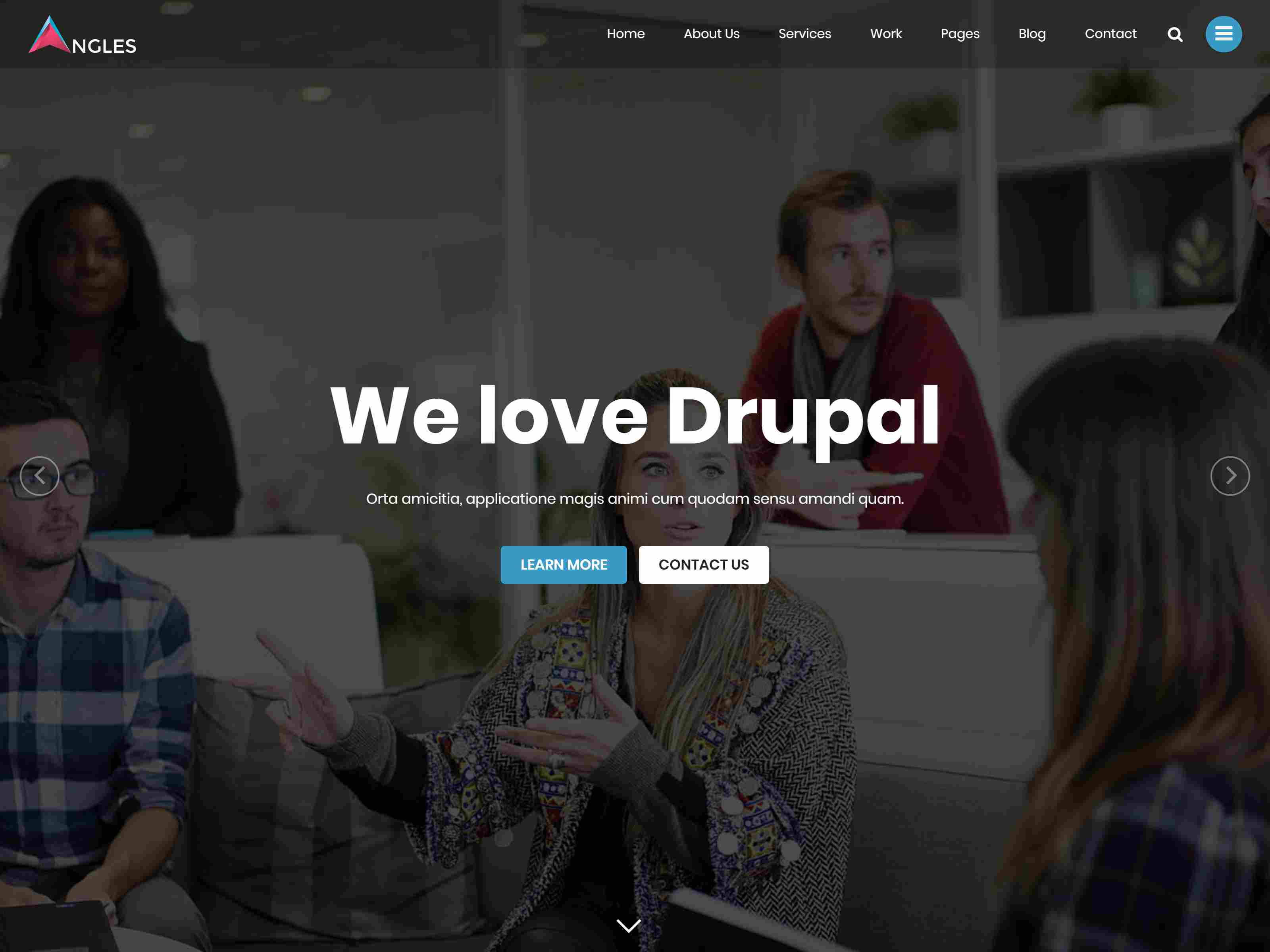 Angles - Multipurpose One & Multi Page Drupal 8 Theme