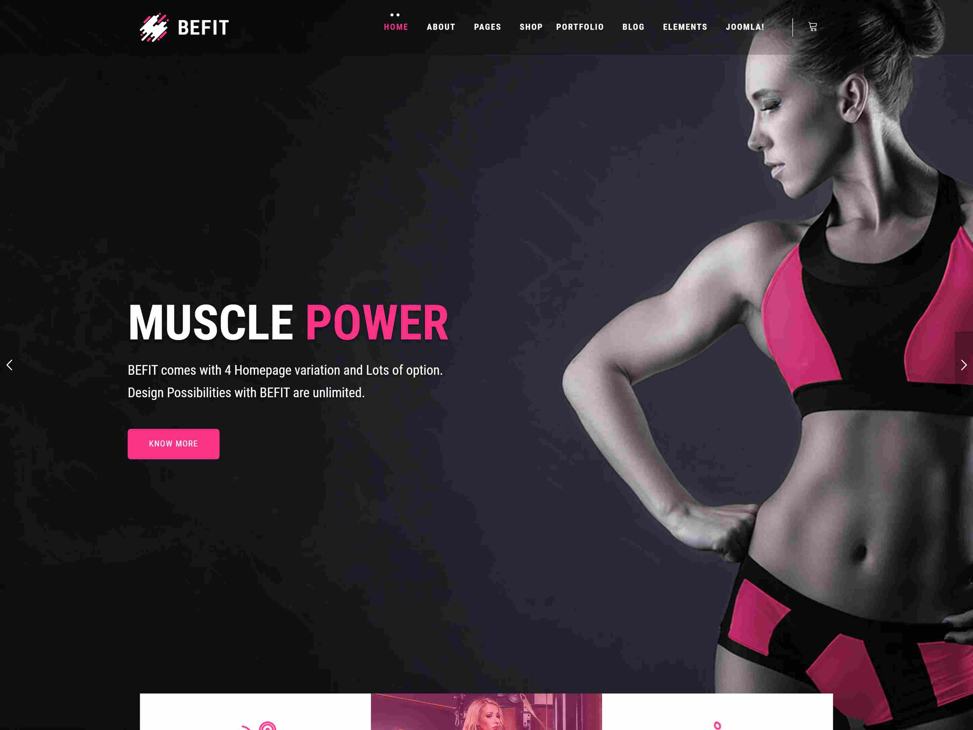 Best Premium Fitness Joomla Themes