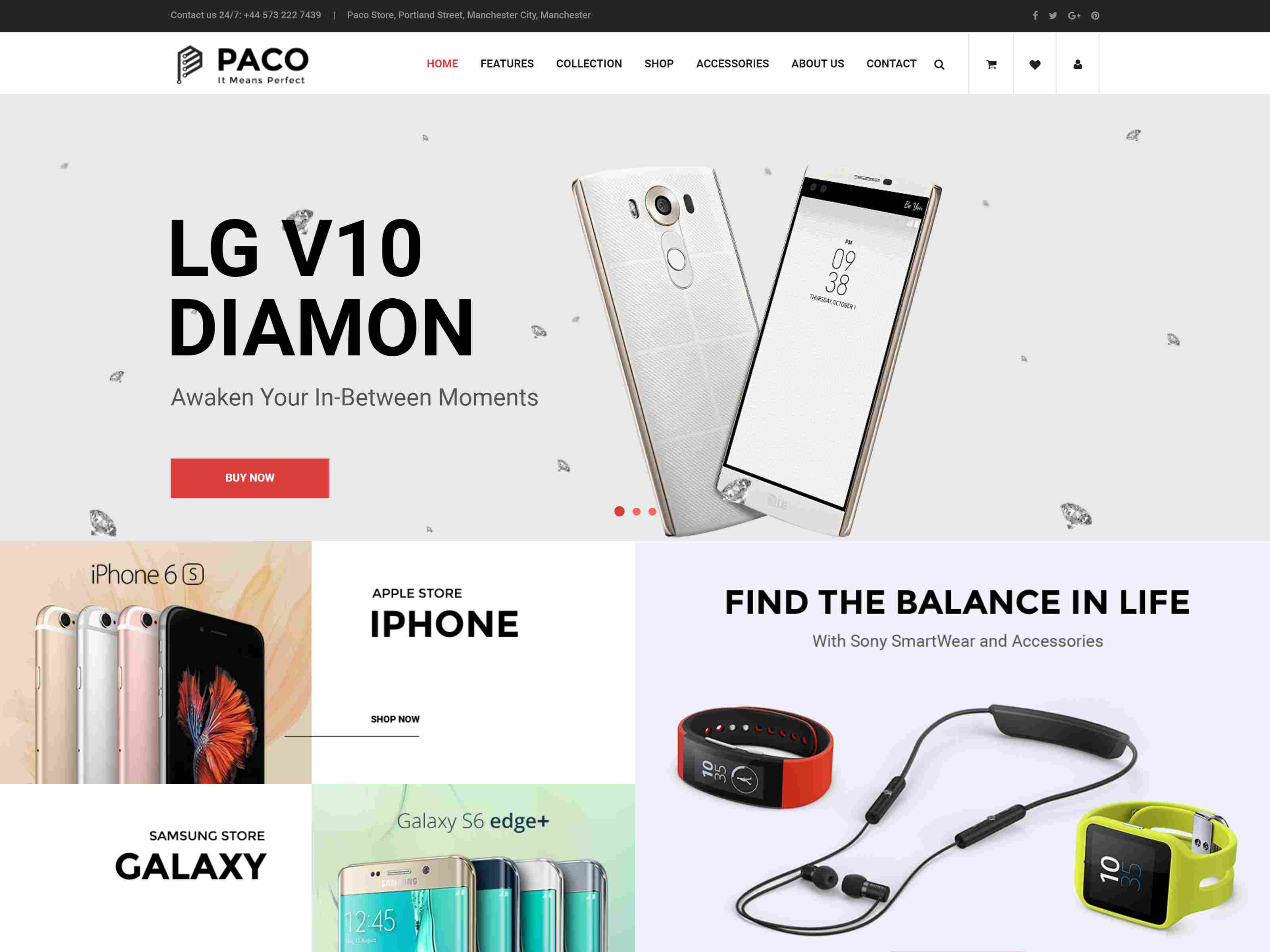 Best Premium Security Magento Themes