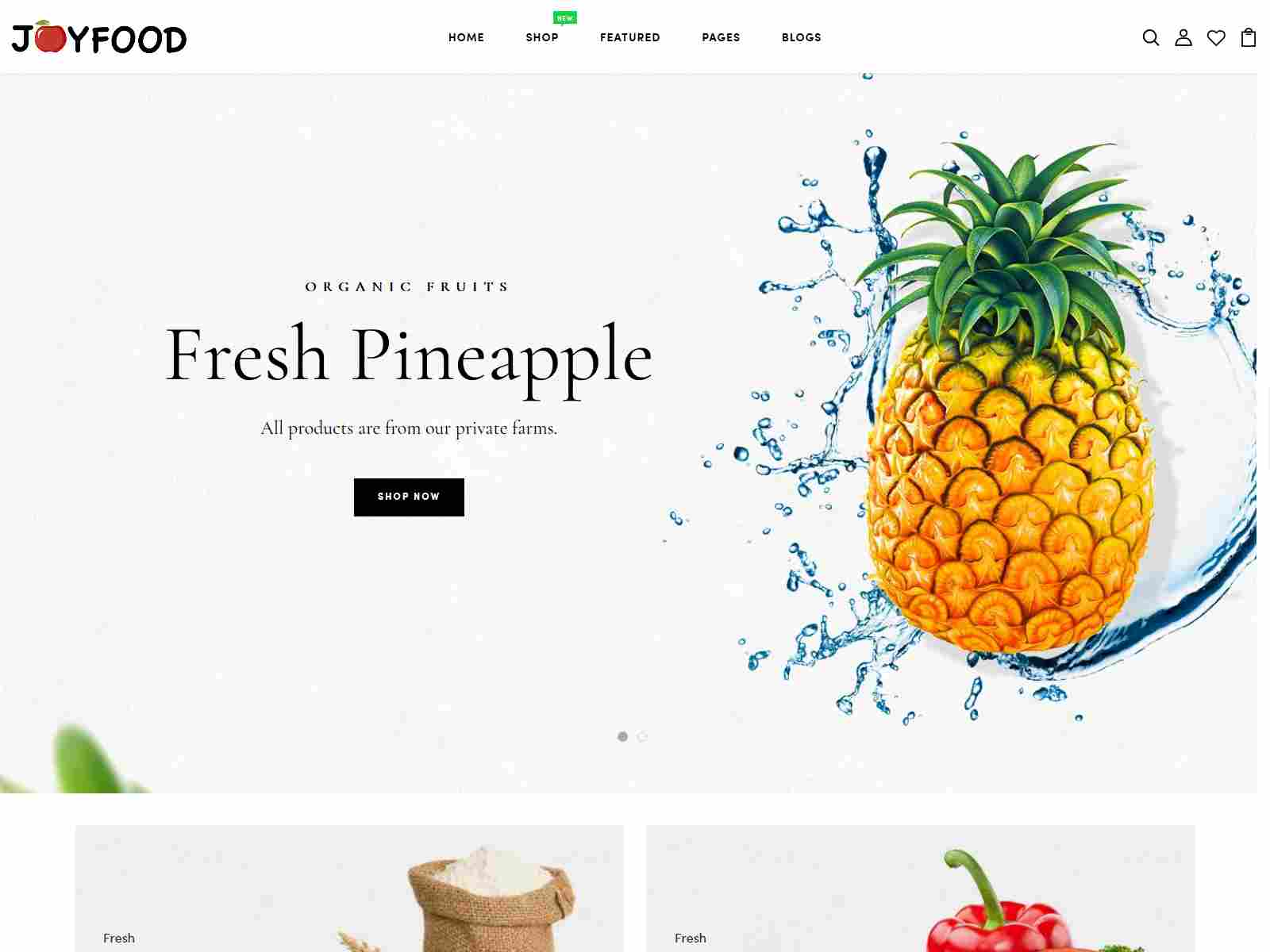 JoyFood - Grocery, Supermarket Organic Food/Fruit/Vegetables eCommerce Shopify Theme