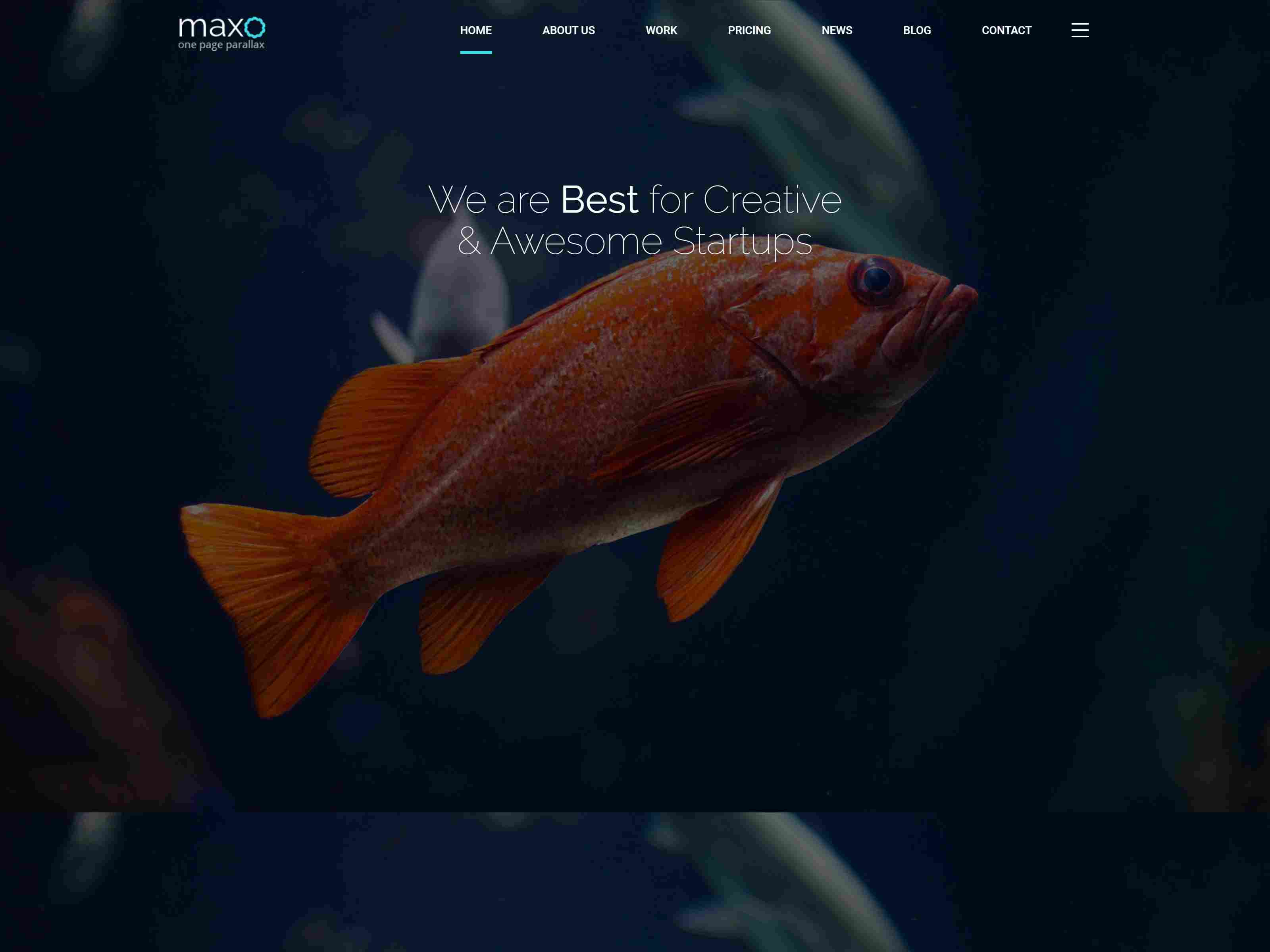 Maxo - One Page Parallax Joomla Template