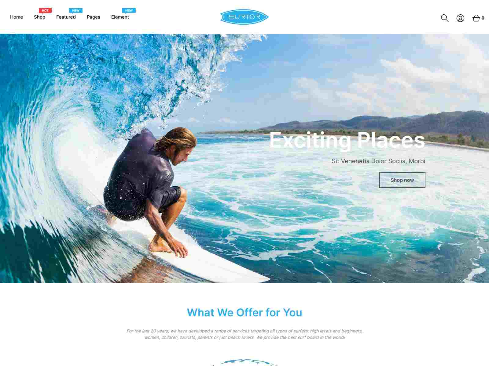 Best Premium Surfing Shopify Themes