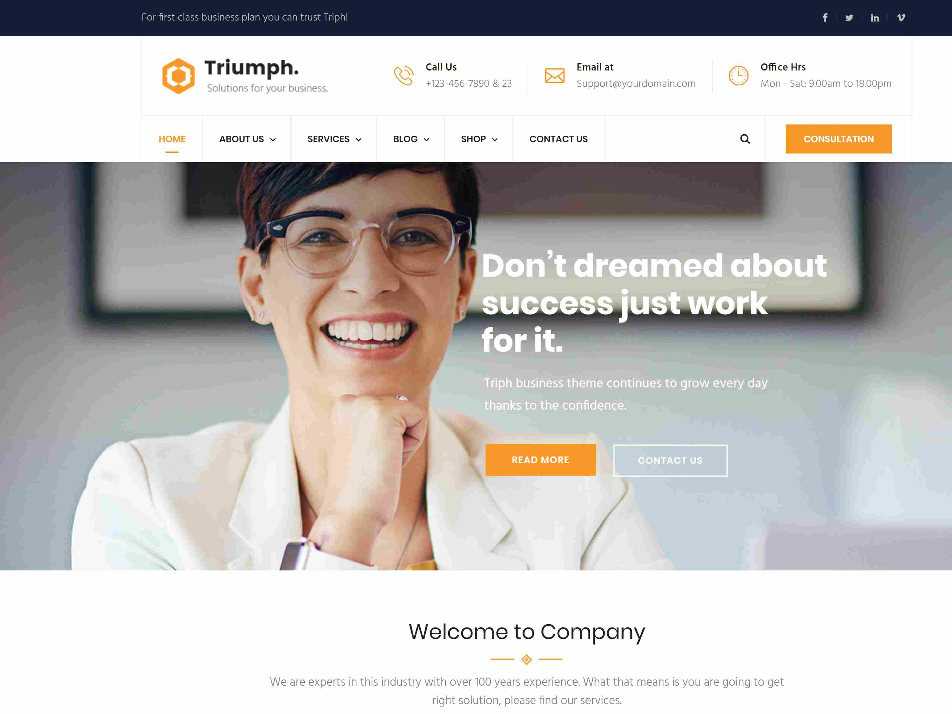 Triumph - Business Consulting and Professional Services Drupal 8.8 Theme