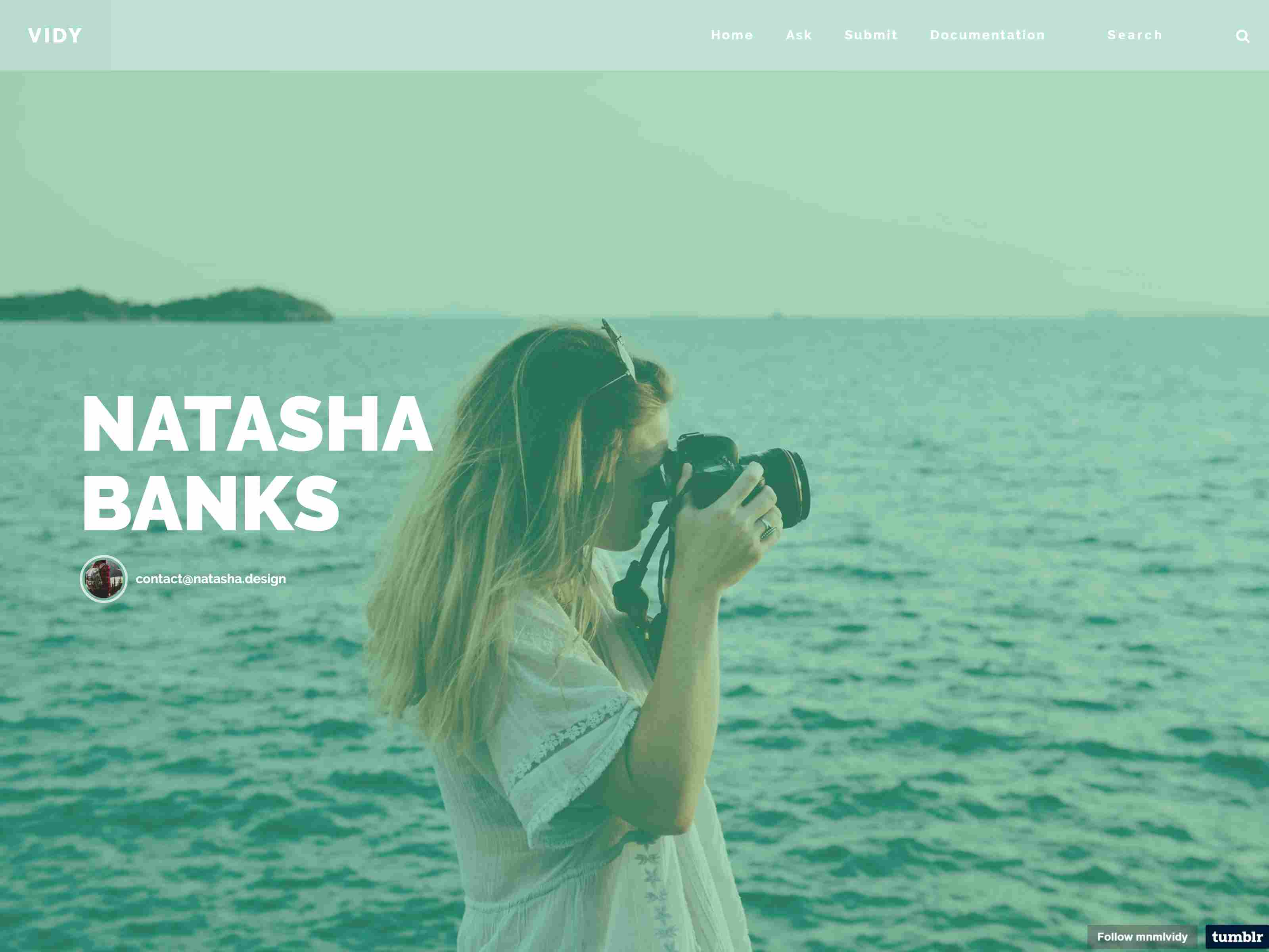 Best Premium Vlog Tumblr Themes