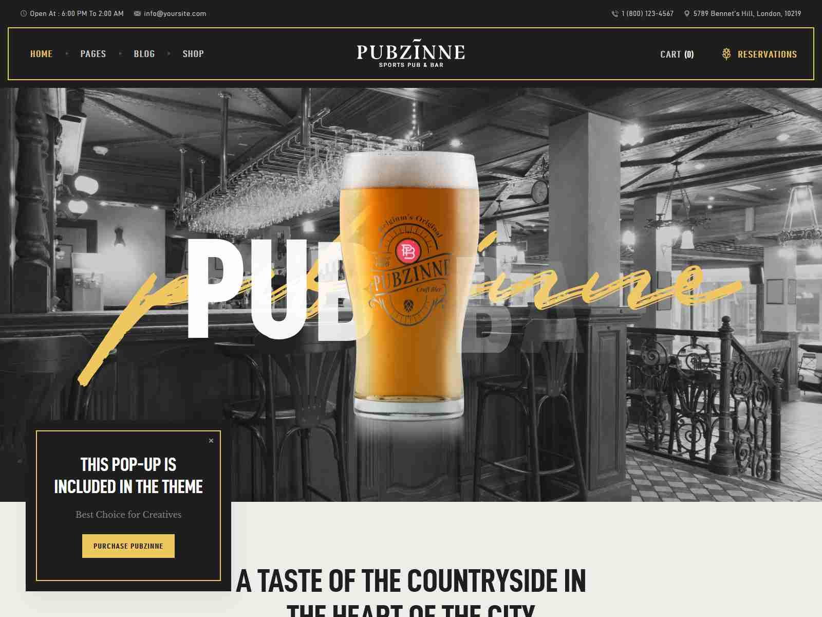 Best Premium Bar WordPress Themes