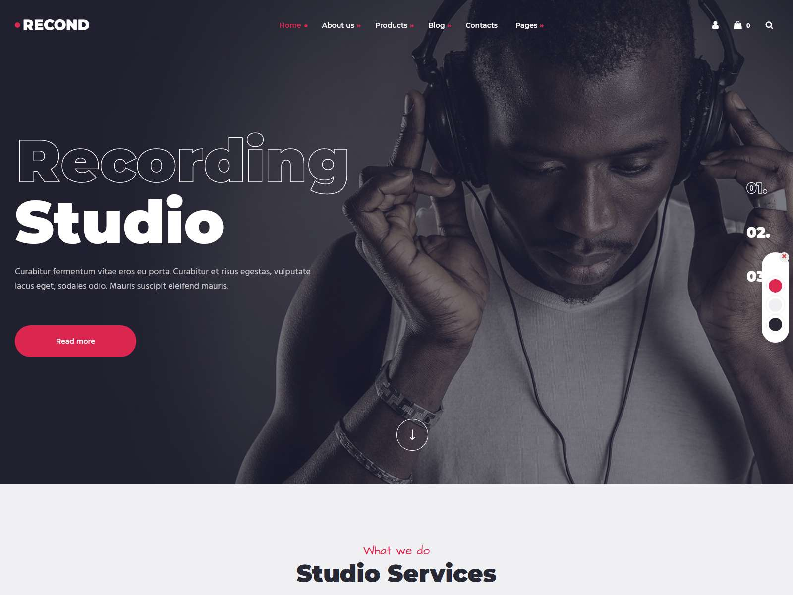 Best Premium Studio WordPress Themes