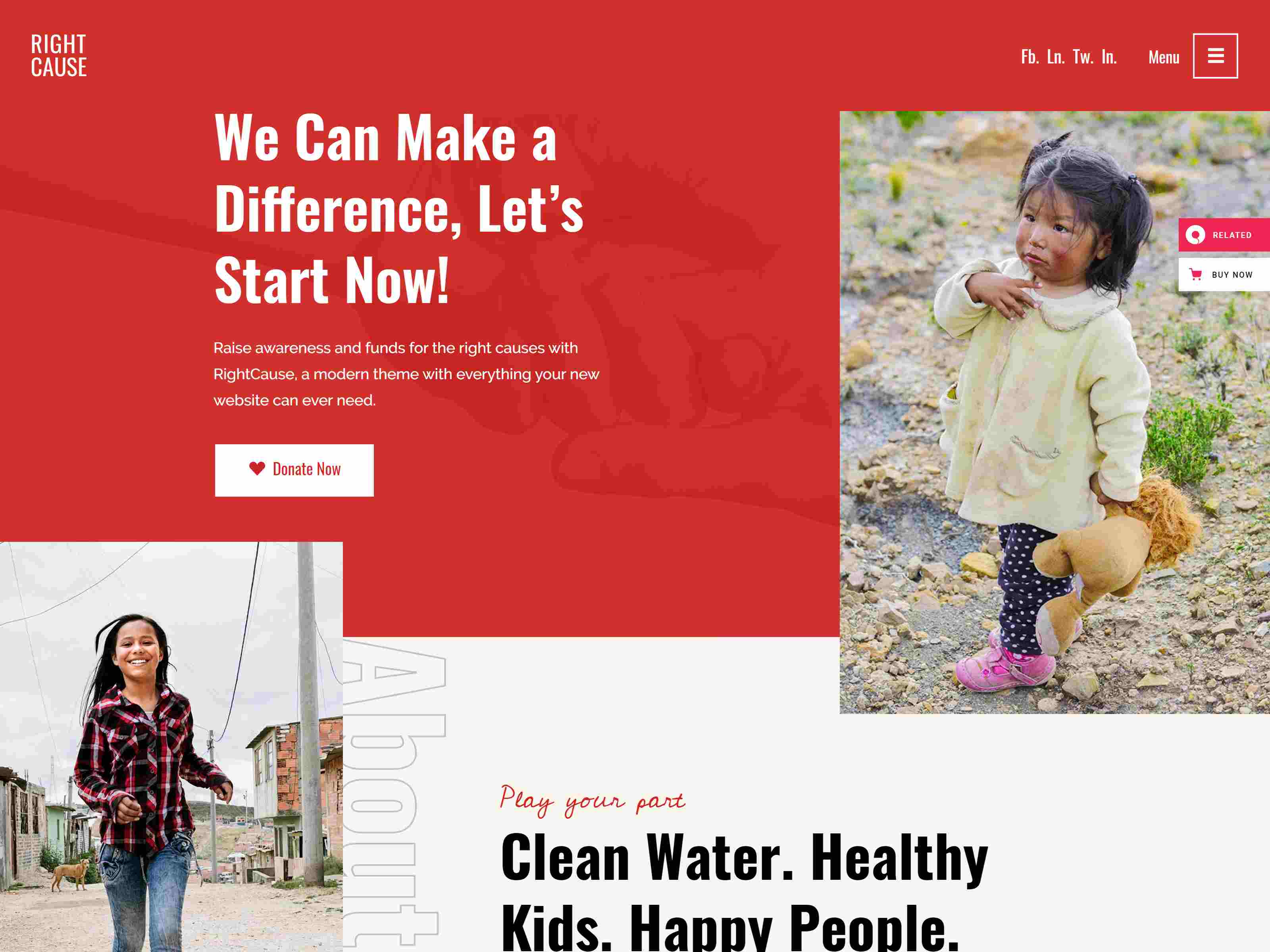 RightCause - Charity and Donation Theme fundraising WordPress theme