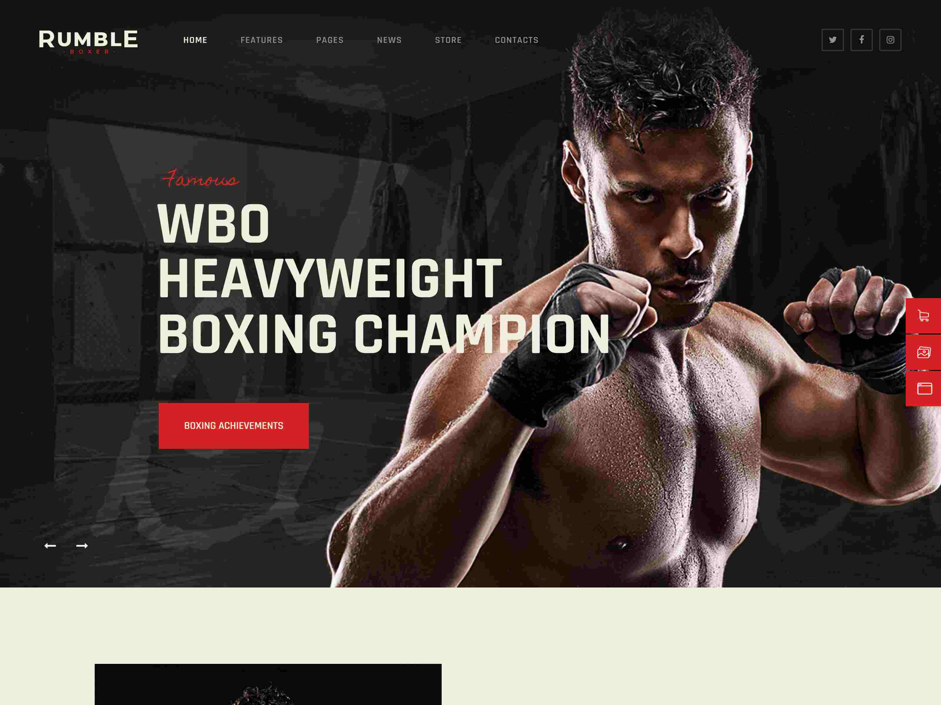 Best Premium Boxing WordPress Themes