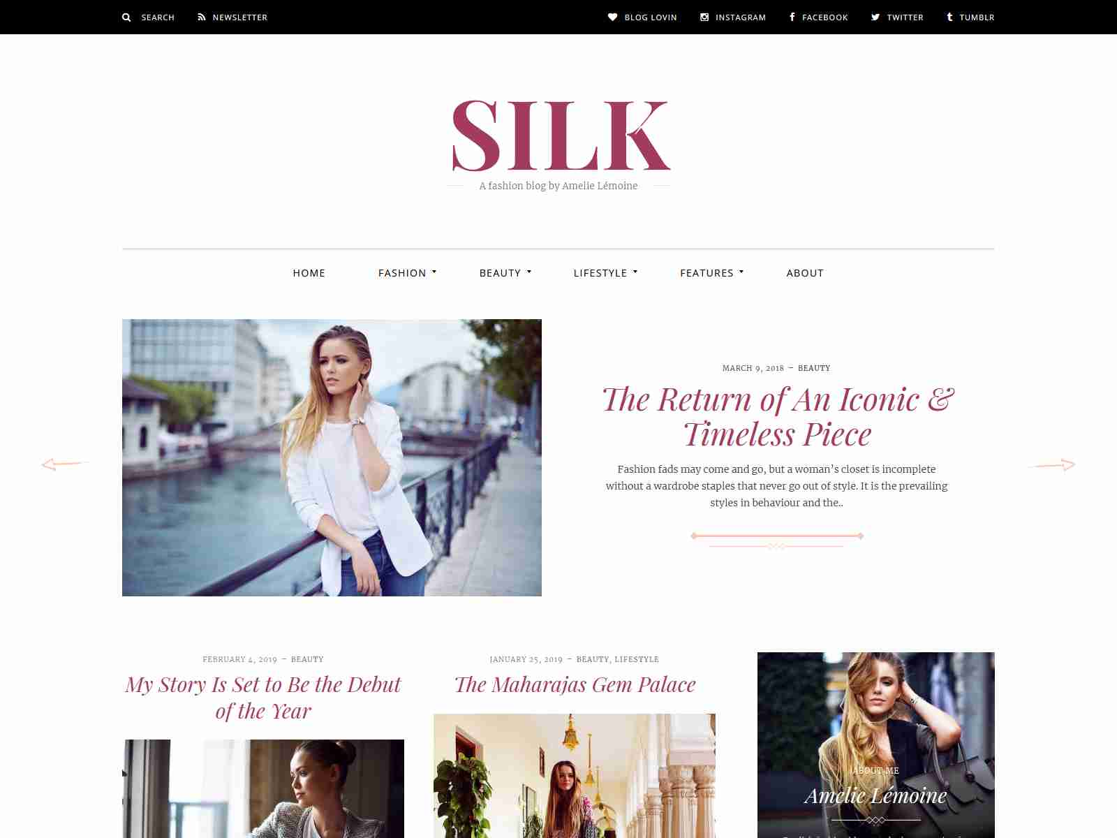 Silk - A Fashion Blogging WordPress Theme