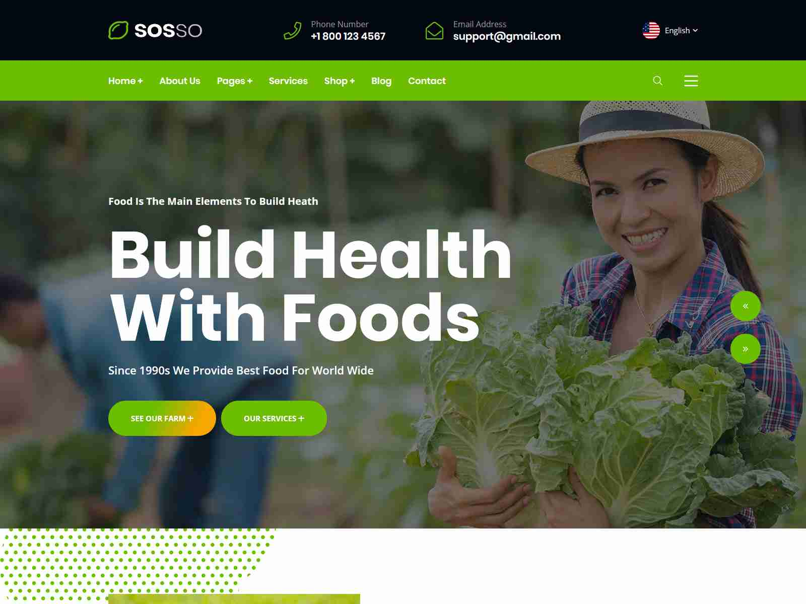 Sosso - Organic Food and Agriculture WordPress Theme