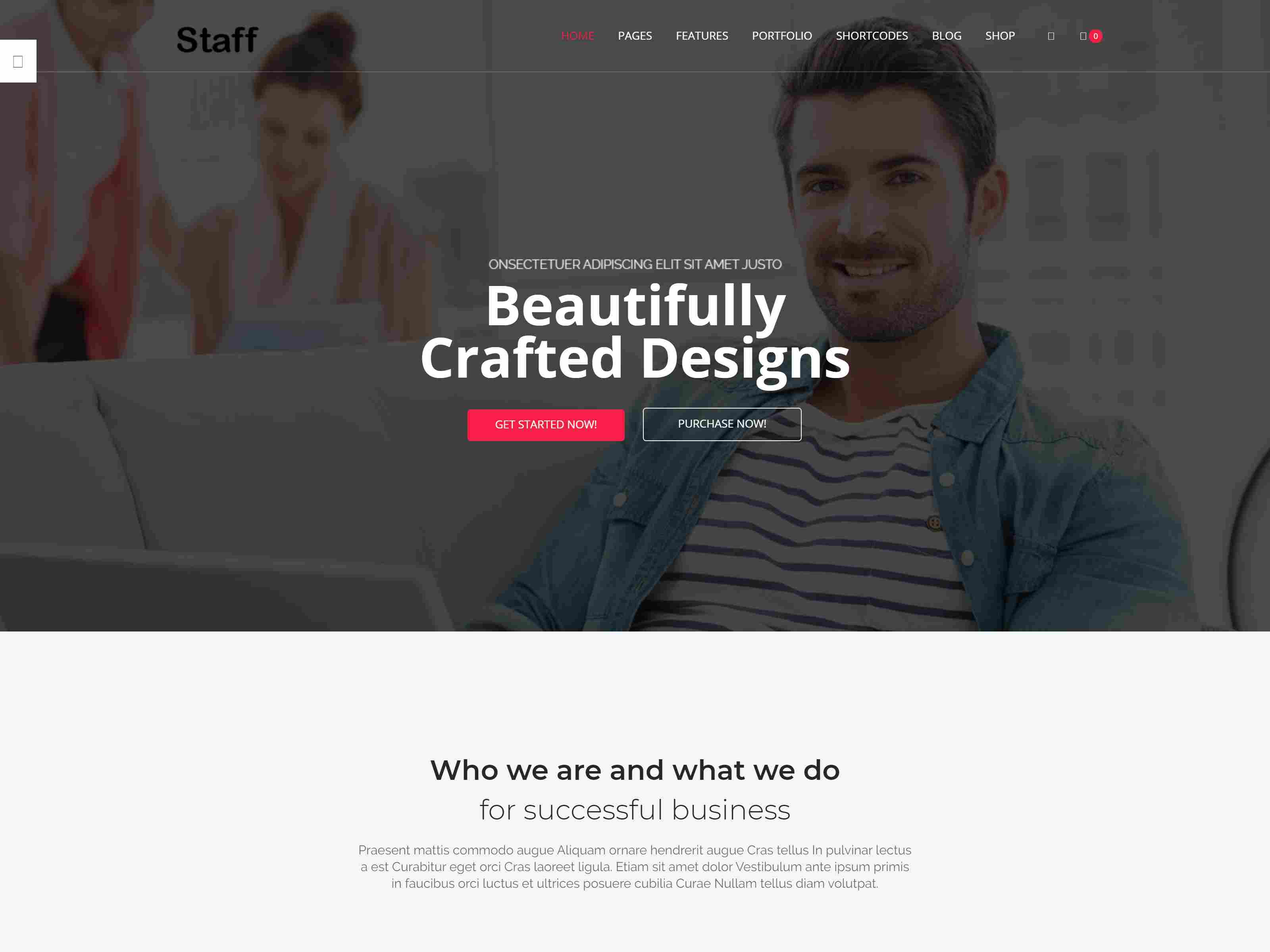 Best Premium Agency Drupal Themes