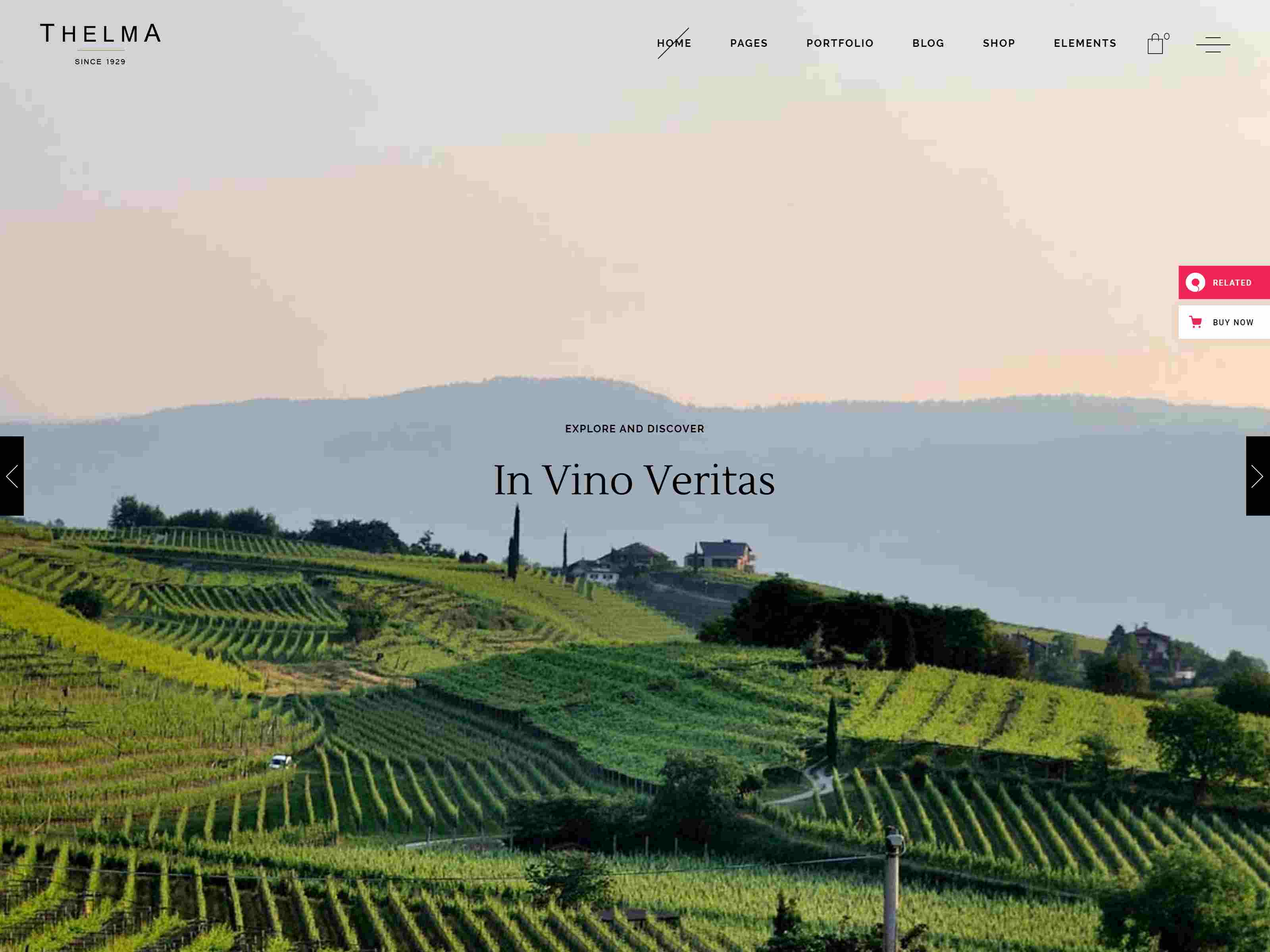 Best Premium Winery WordPress Themes