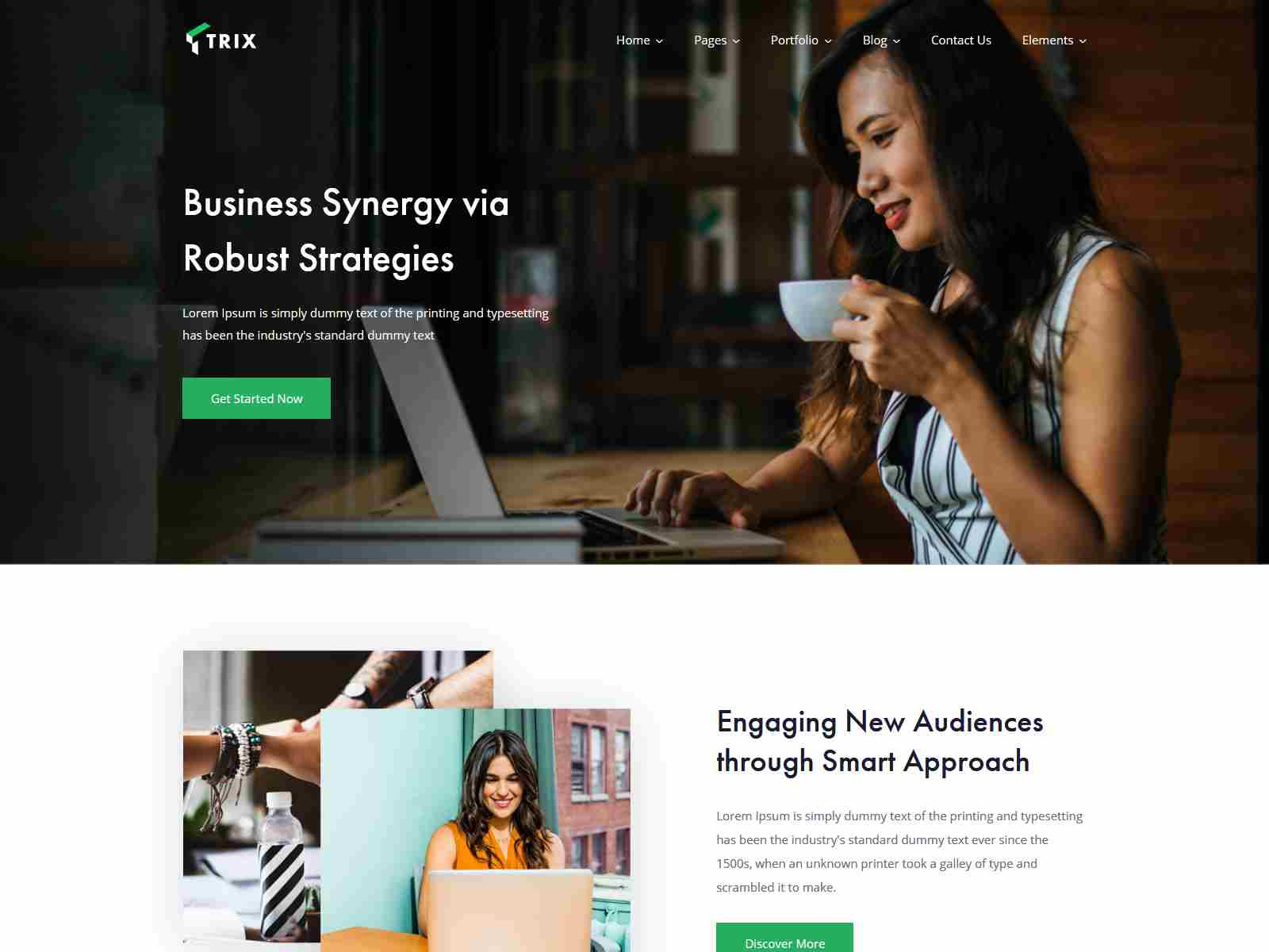 Trix - Startup Business Theme