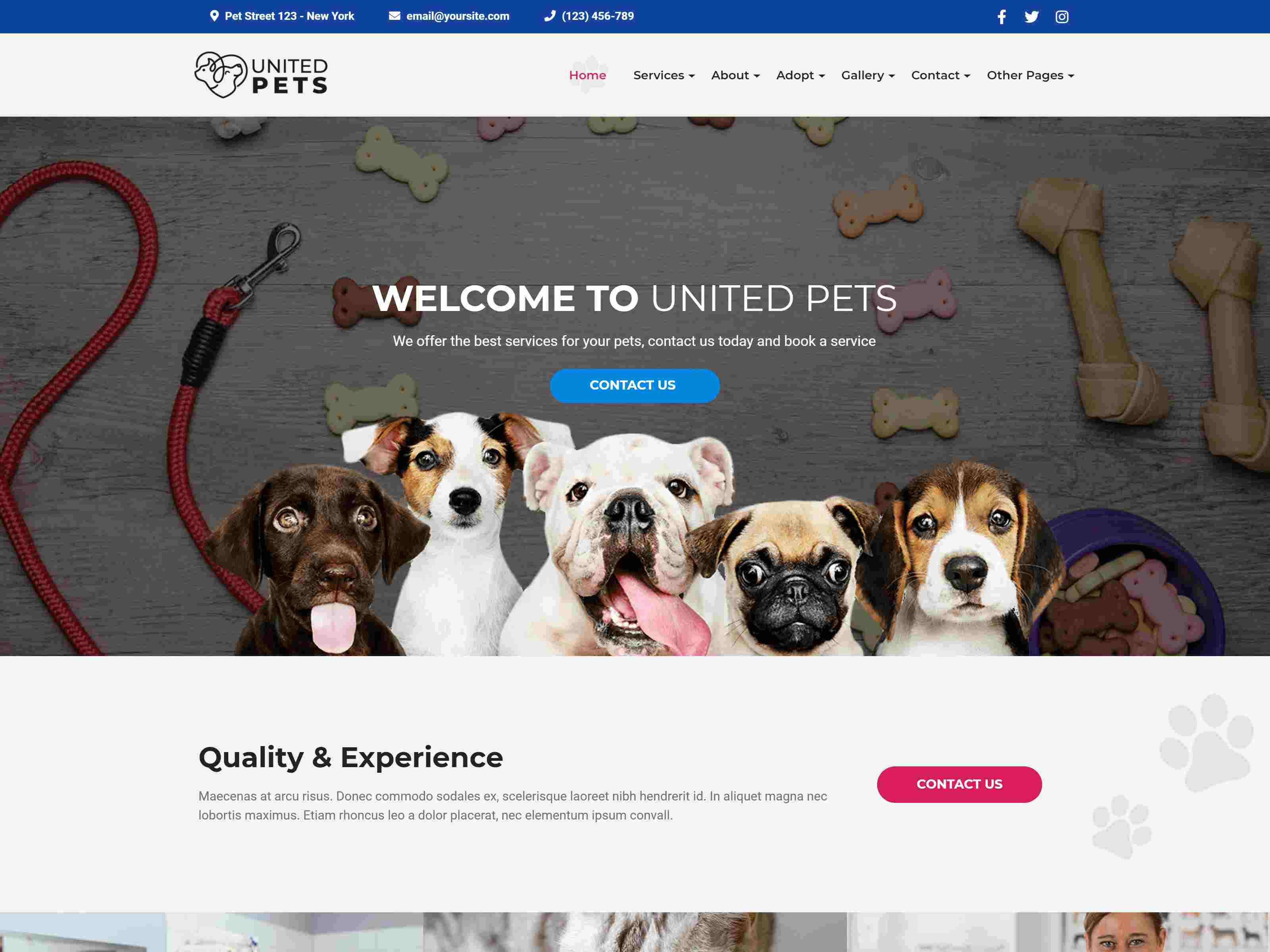 Best Premium Pets WordPress Themes