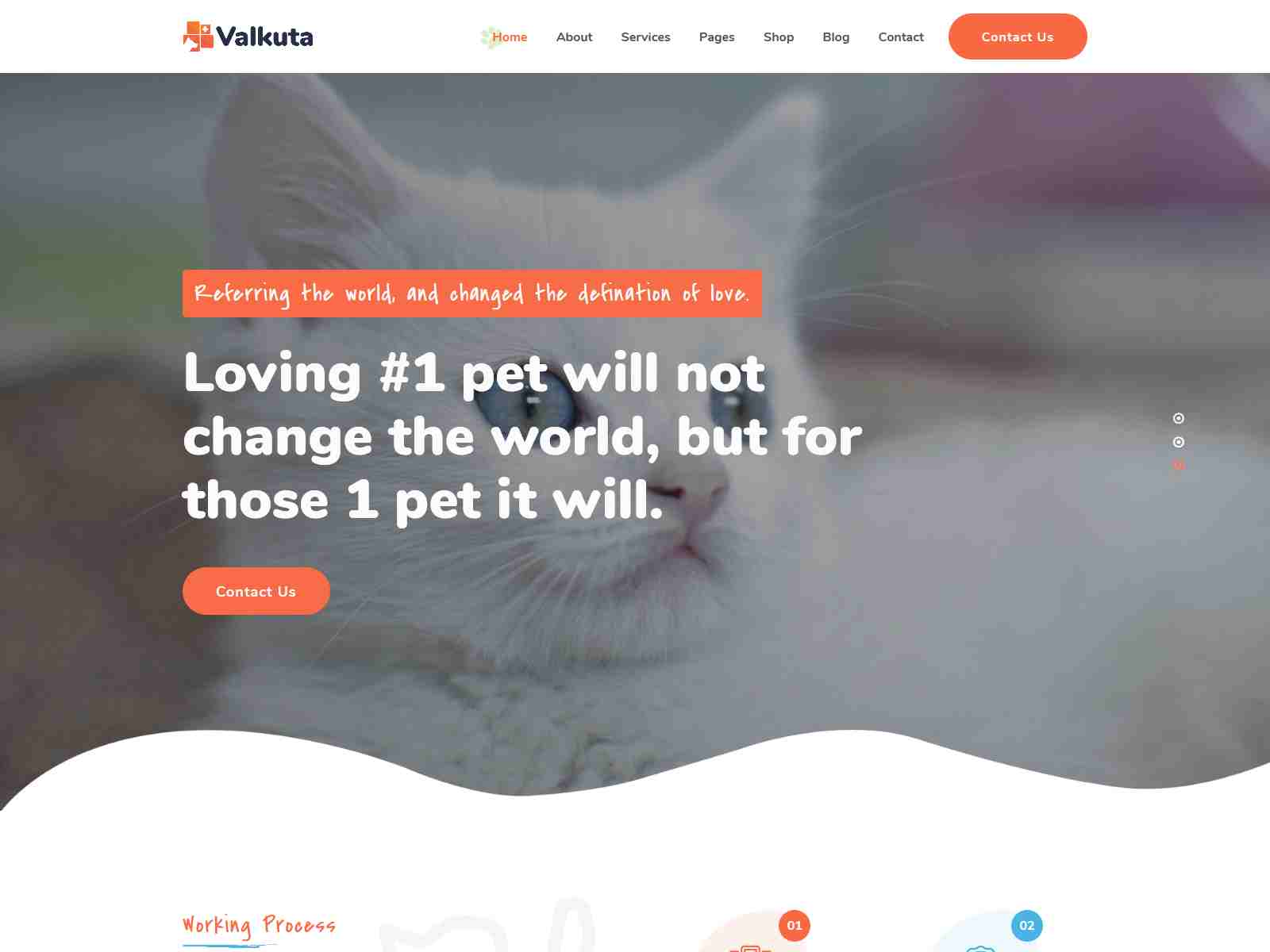 Valkuta - Pet WordPress Theme