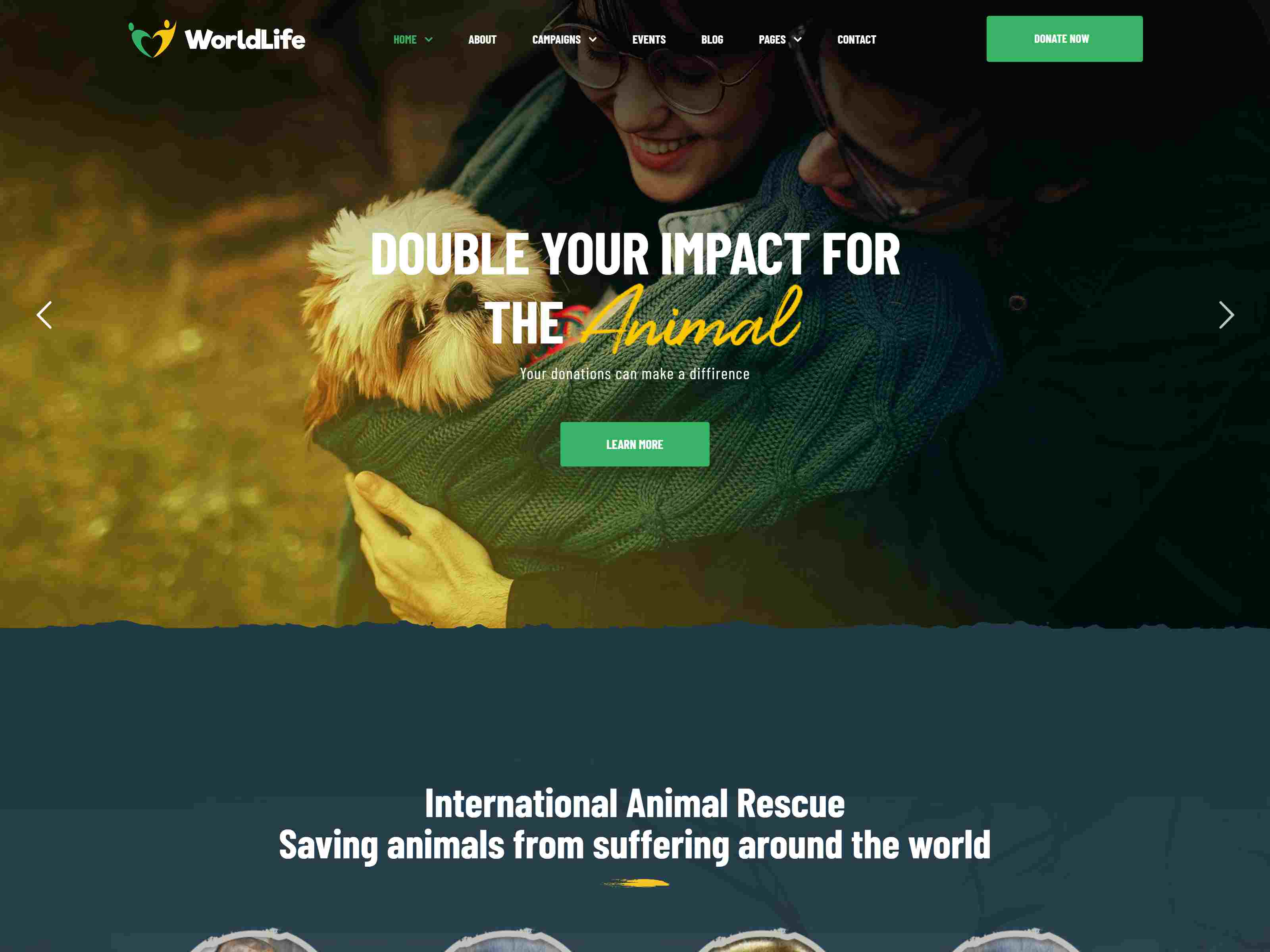 Worldlife - Nonprofit & Charity WordPress theme