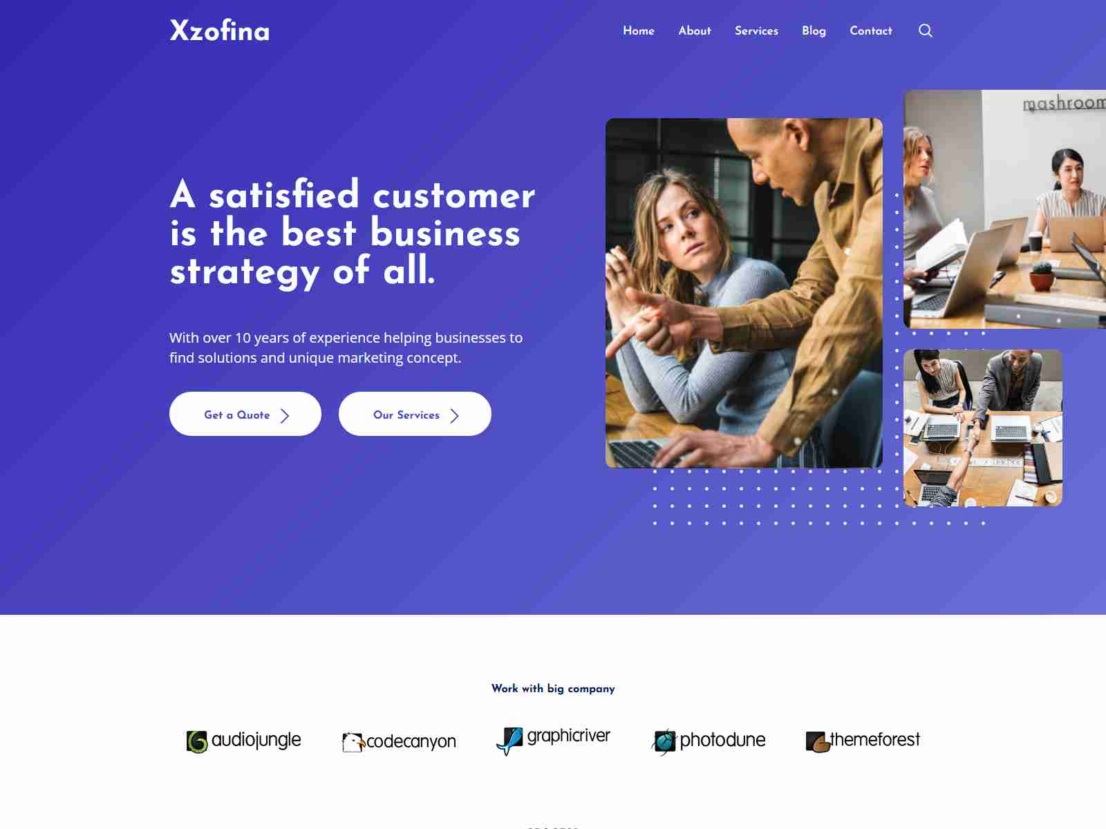 Xzofina - Business And Marketing WordPress Theme Consulting Firms WordPress Themes